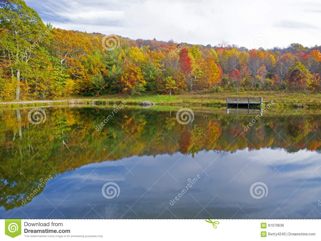 Water reflections in small pond in fall.