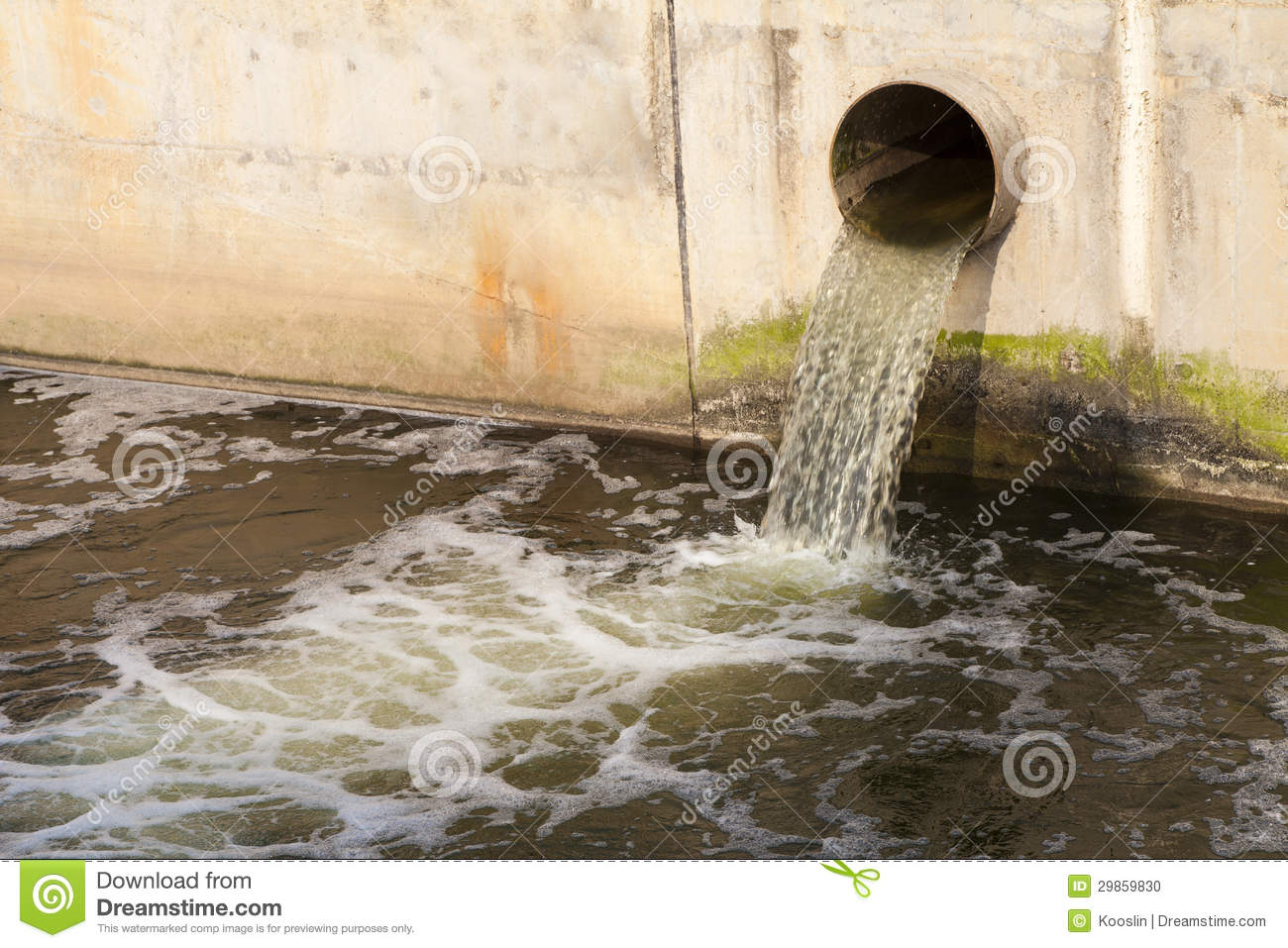SUGGESTED BROWSING