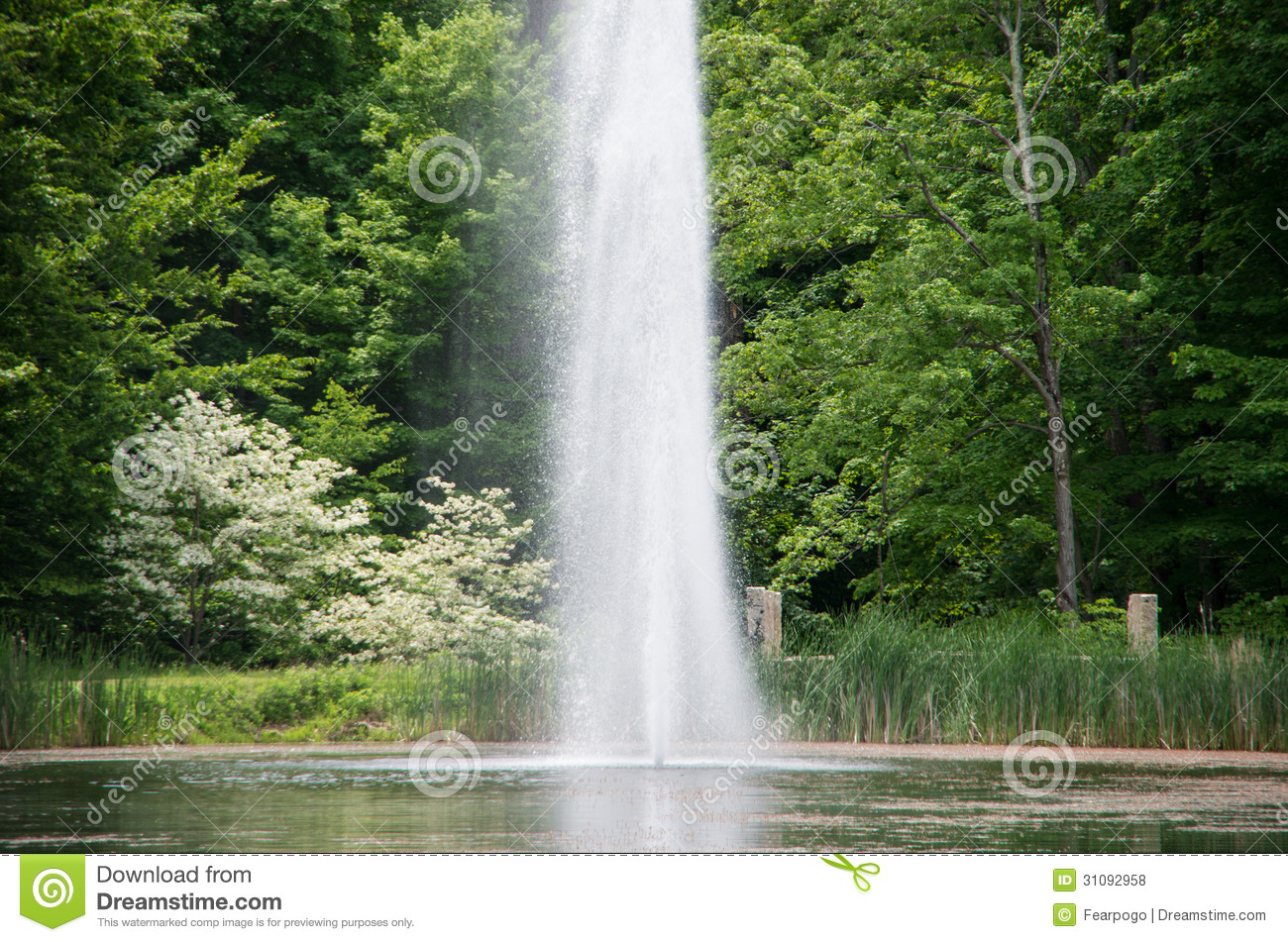 Water Spout In A Pond Royalty Free Stock Photos Image