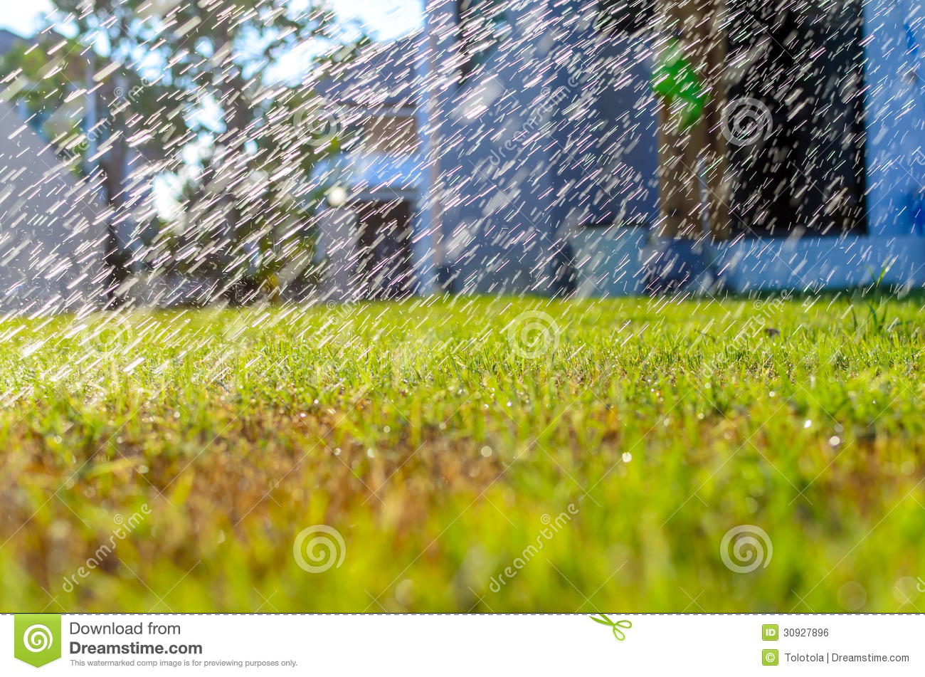 Water Spray On The Grass Backbround Royalty Free Stock