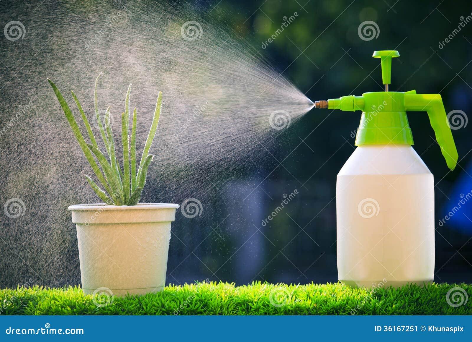Απωθητικο μελισσων Water-spray-water-to-red-onion-plant-beautiful-blur-backgru-backgrund-green-house-garden-evening-36167251