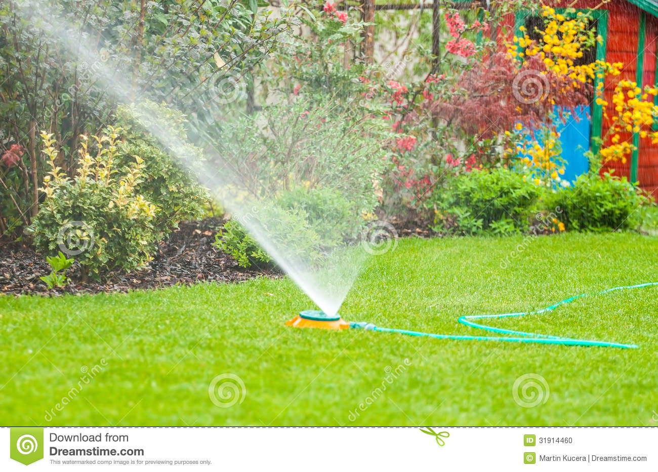 Water Sprinkler Spraying Water Over Green Grass In The