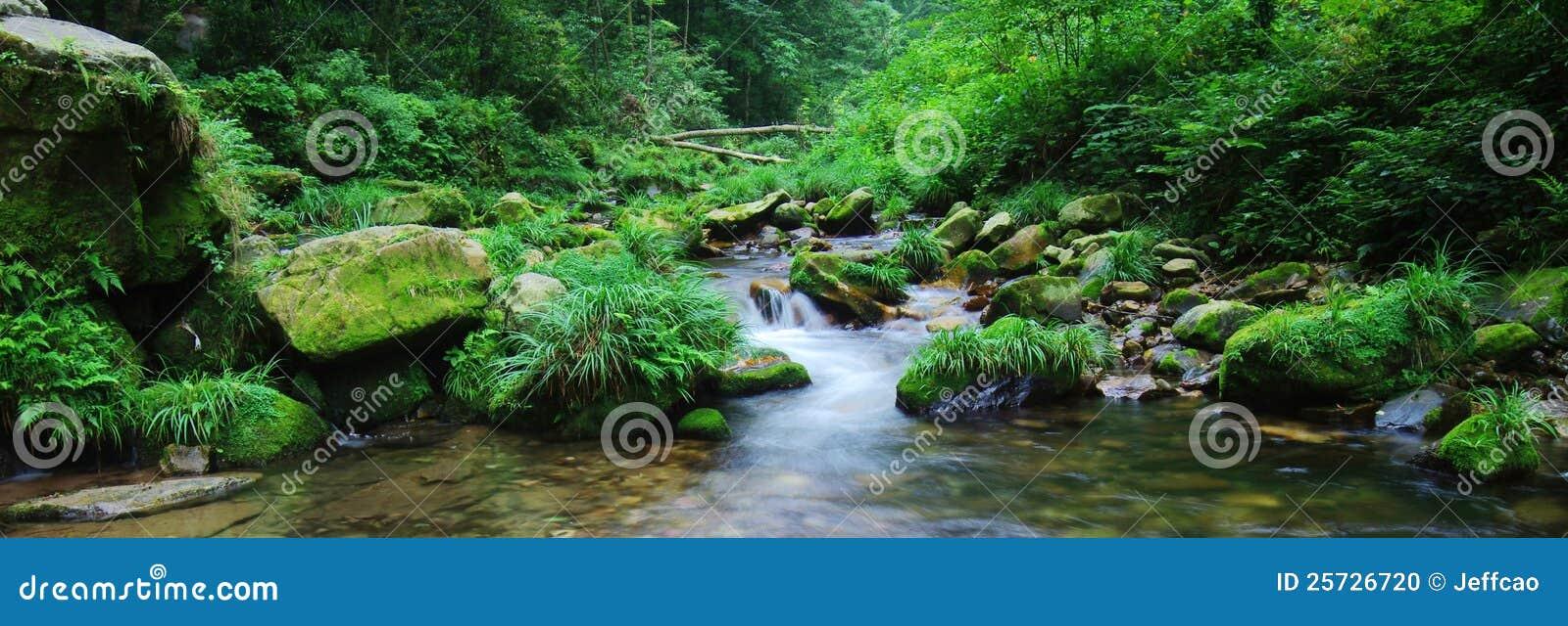 Flowing water in spring