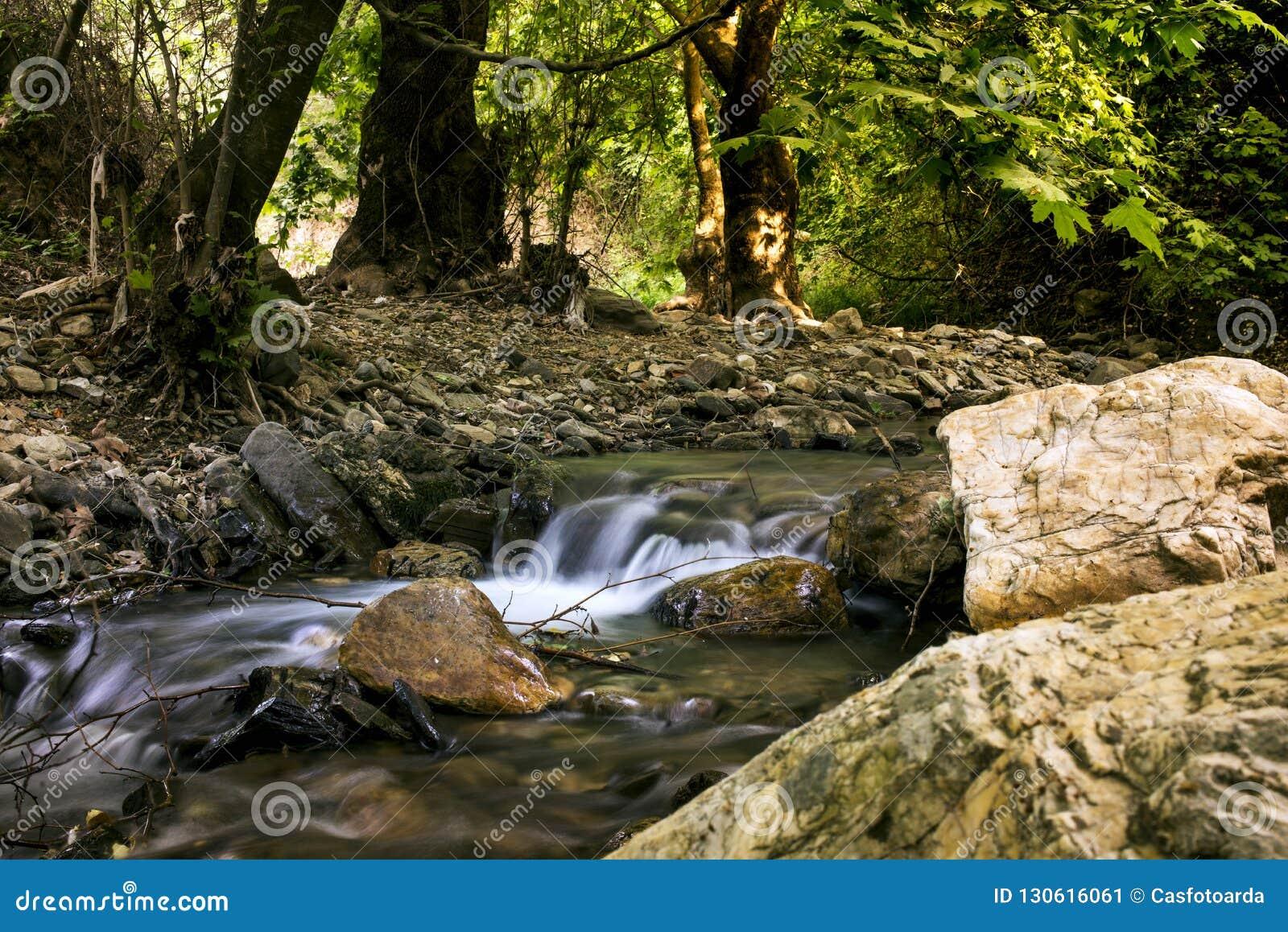 Water Stream In Izmir Turkey Kemalpasa Stock Image Image Of Cascade Foliage 130616061