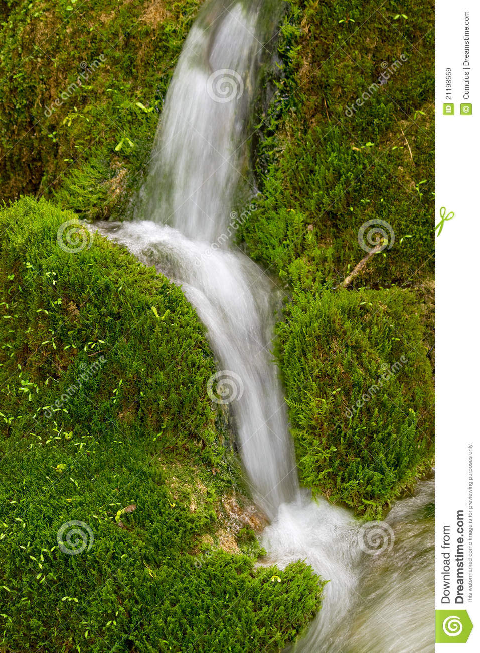 Water streaming over green moss.