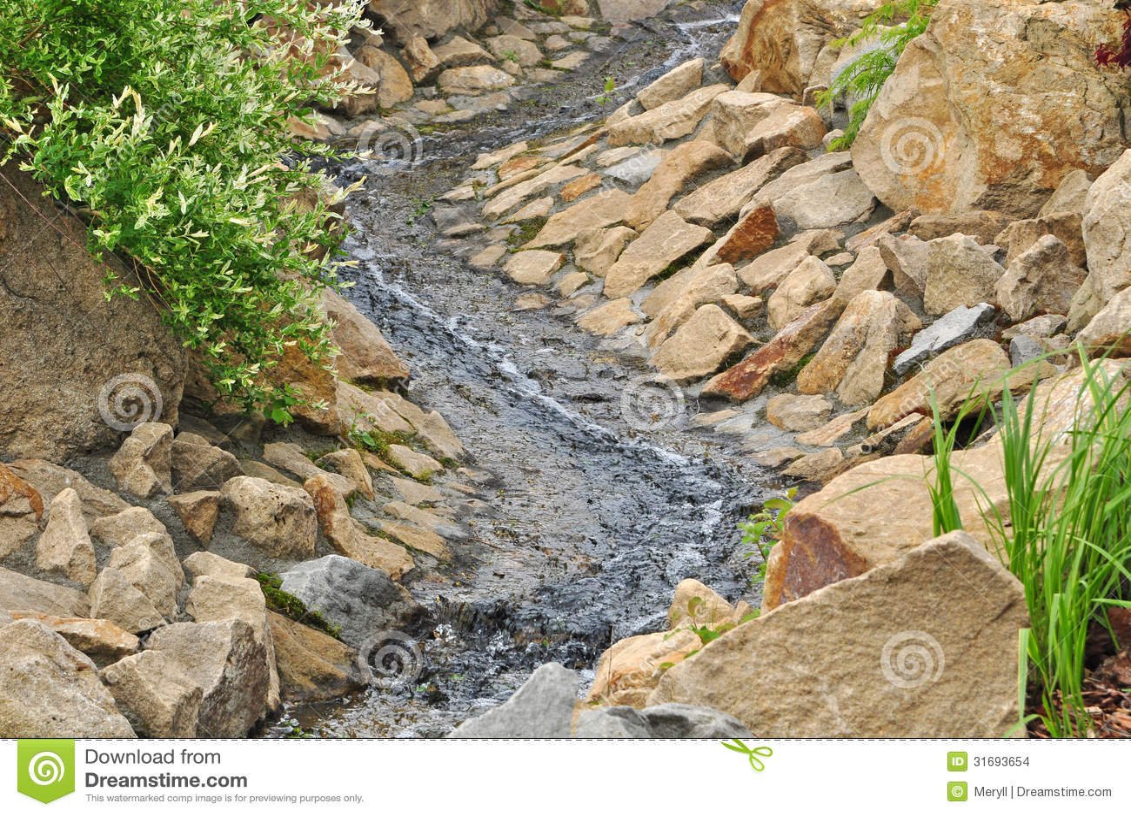 Water in tuin stock foto afbeelding bestaande uit landschap