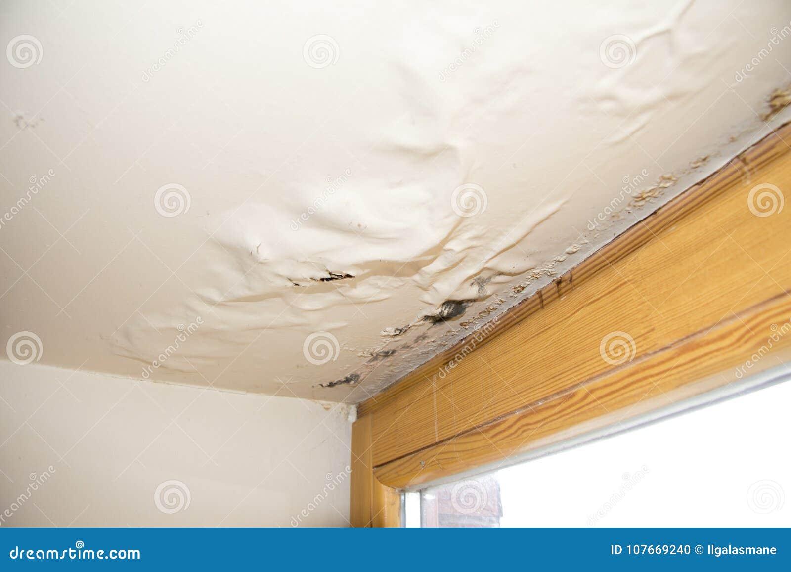 Water, vochtigheid beschadigd plafond naast venster