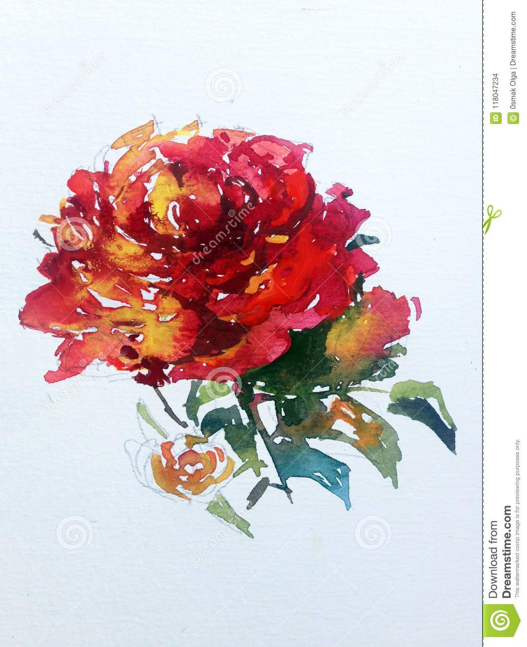 Watercolor Abstract Background Floral Flower Red Rose Beauty