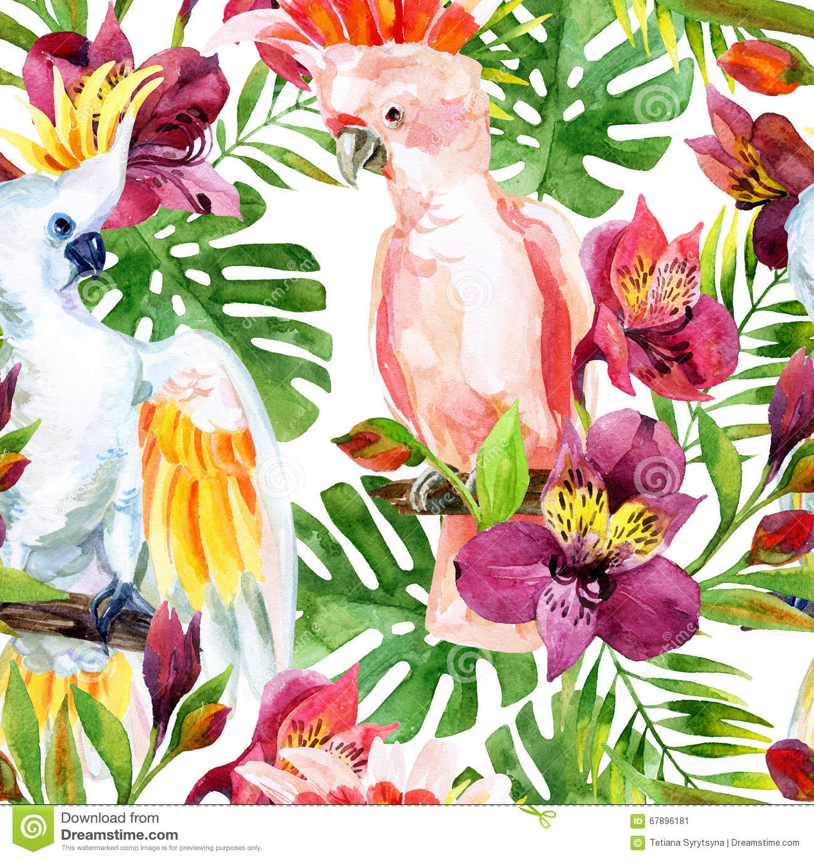 watercolor australian cockatoo seamless pattern stock
