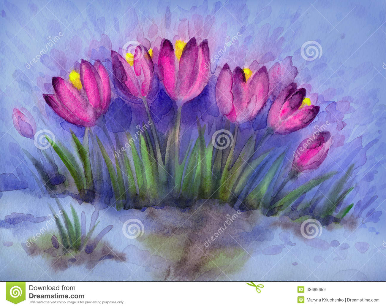 Watercolor Background Of Early Spring Flowers Crocus Stock