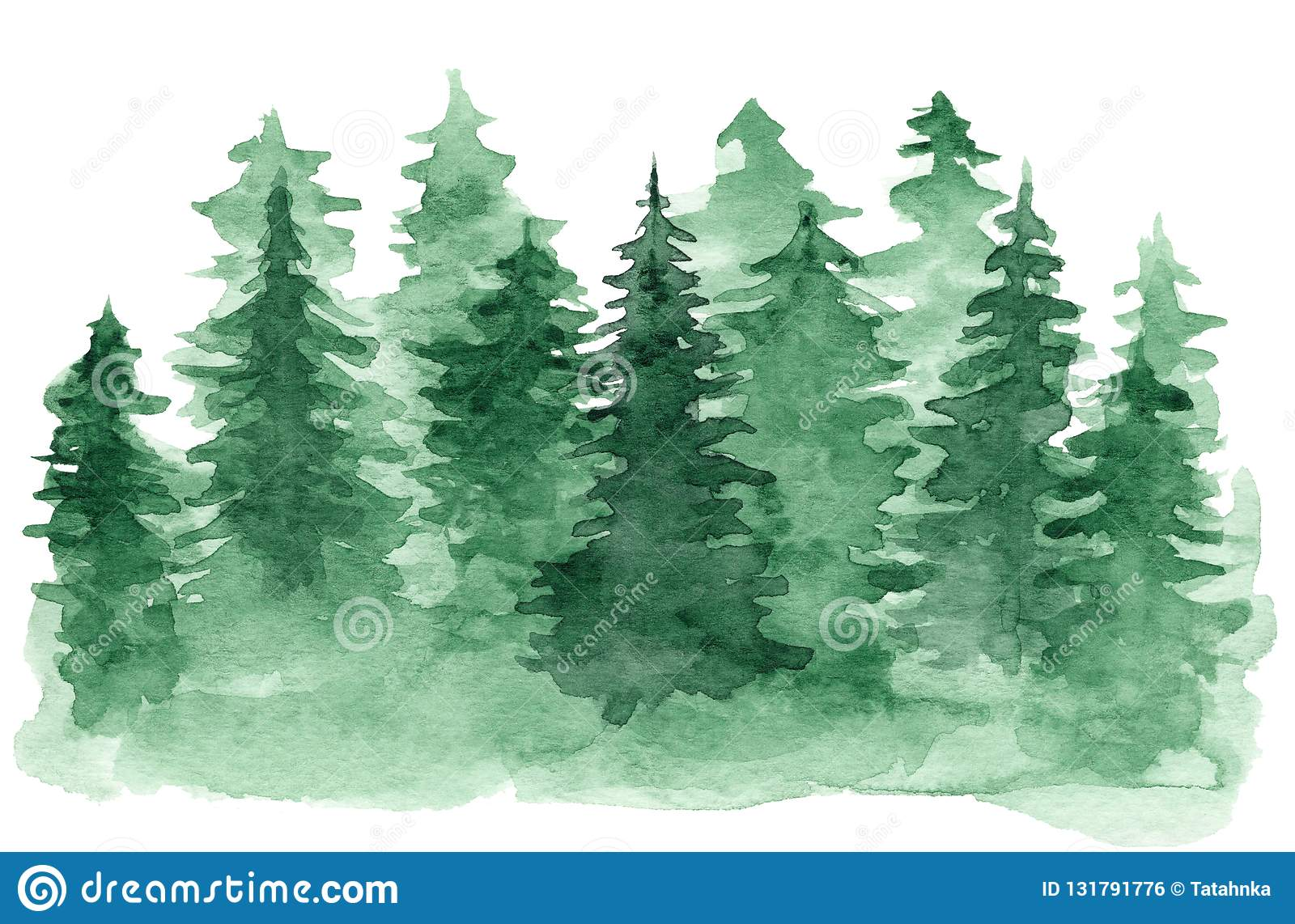 Coniferous Cartoons Illustrations Amp Vector Stock Images