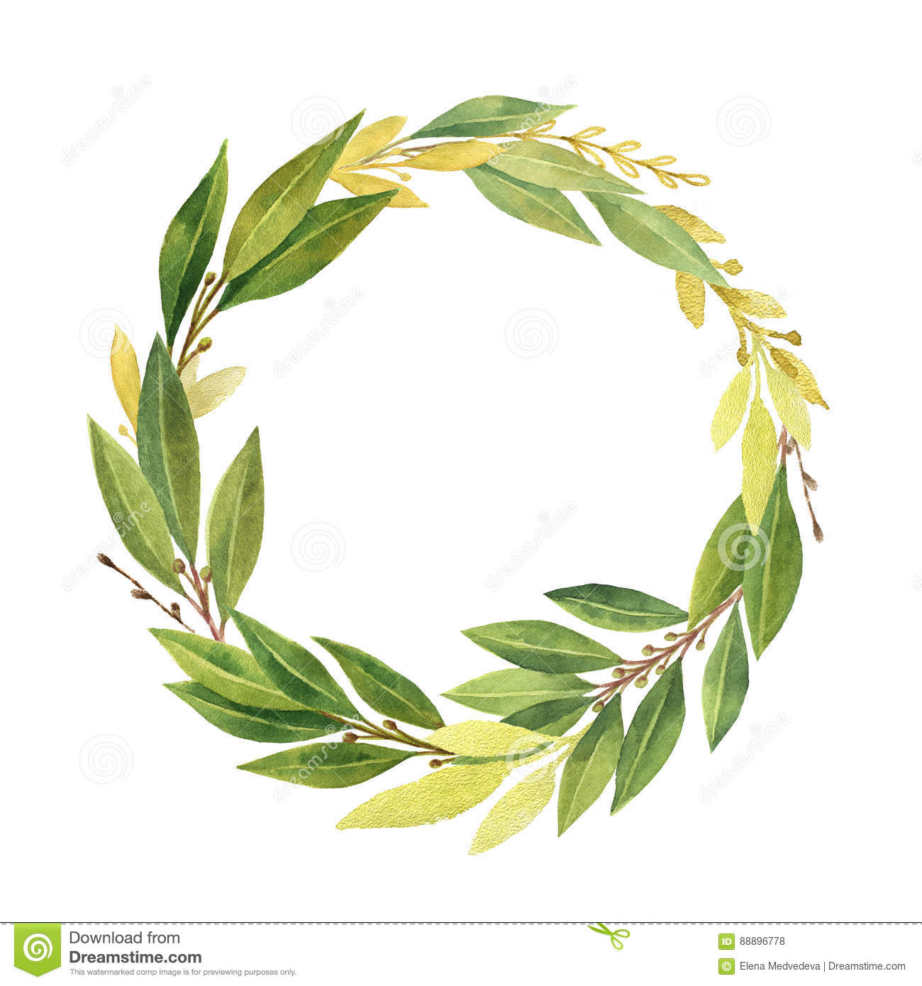 Watercolor Bay Leaf Wreath Isolated On White Background Stock Illustration Illustration Of Bright Drawing 88896778