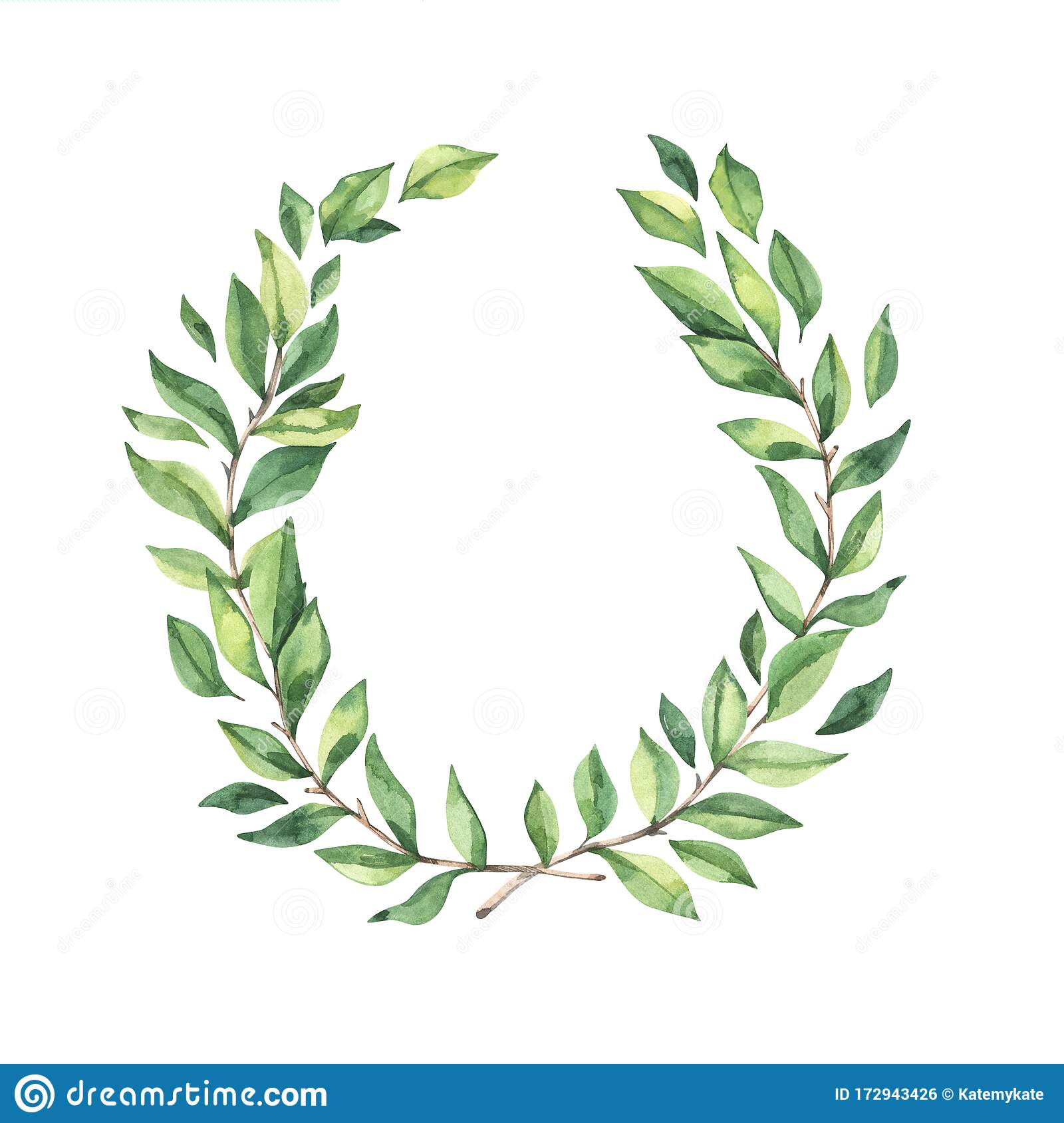 Download Tree Branches With Leaves Png Clipart Tree - Png Format  Transparent Plant Png - 900x900 PNG Download - PNGkit