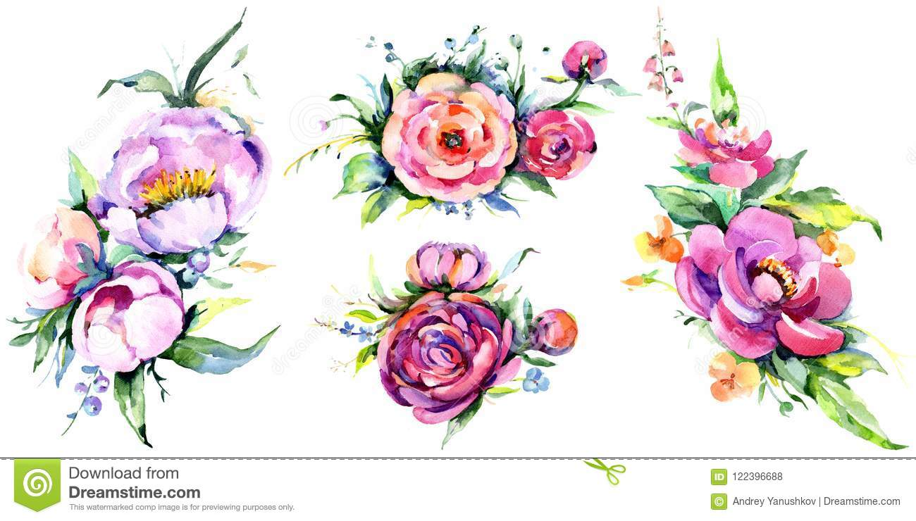 Watercolor bouquet pink peony flowes. Floral botanical flower. Isolated illustration element.