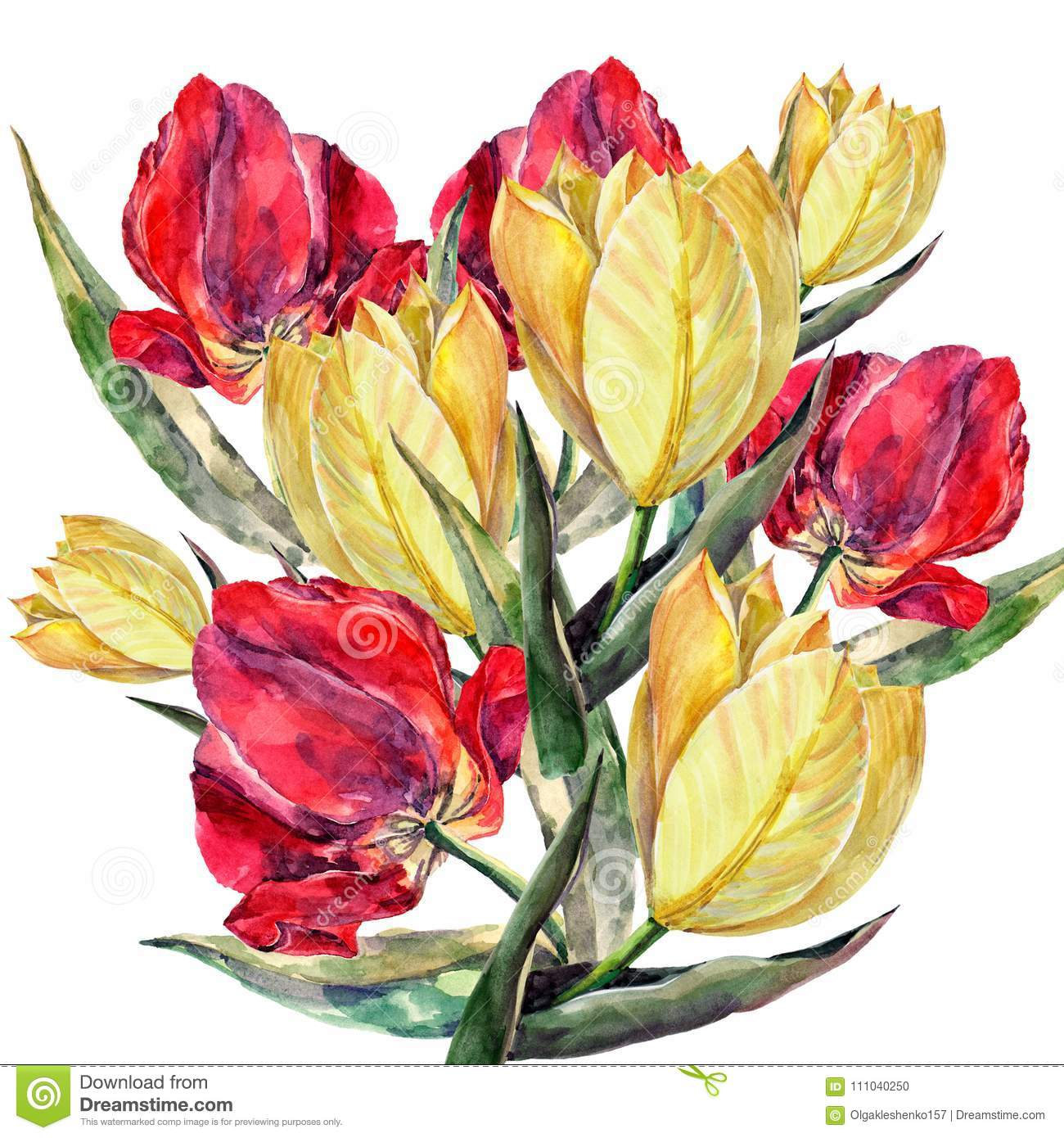Watercolor Bouquet Tulips Beautiful Flowers For Congratulation