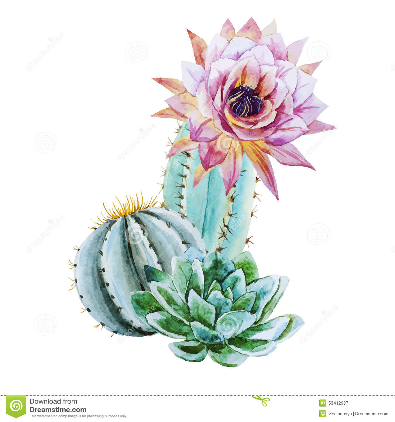 Beautiful vector image with nice watercolor cactus.