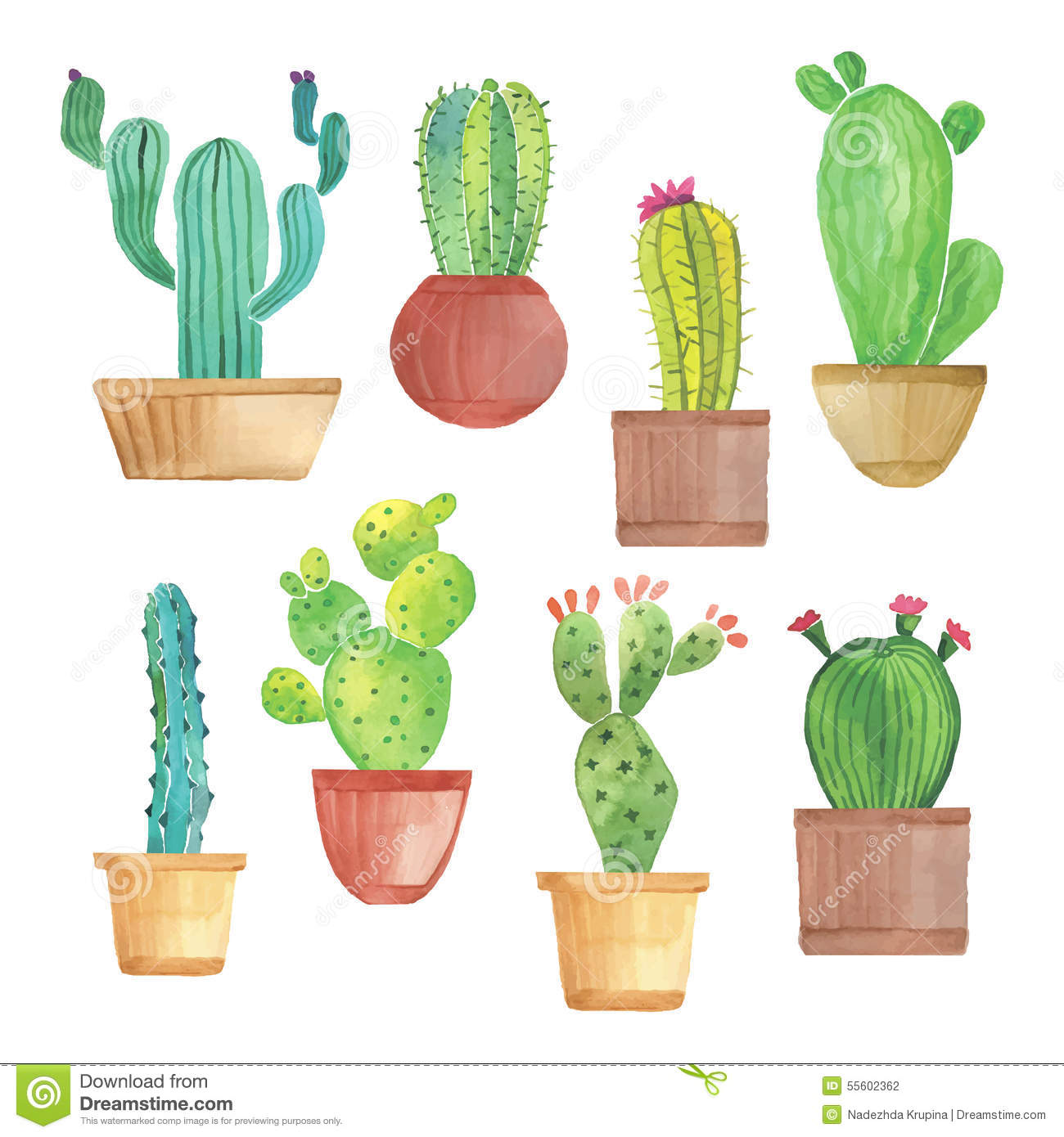 Watercolor Cactus Set Stock Vector - Image: 55602362