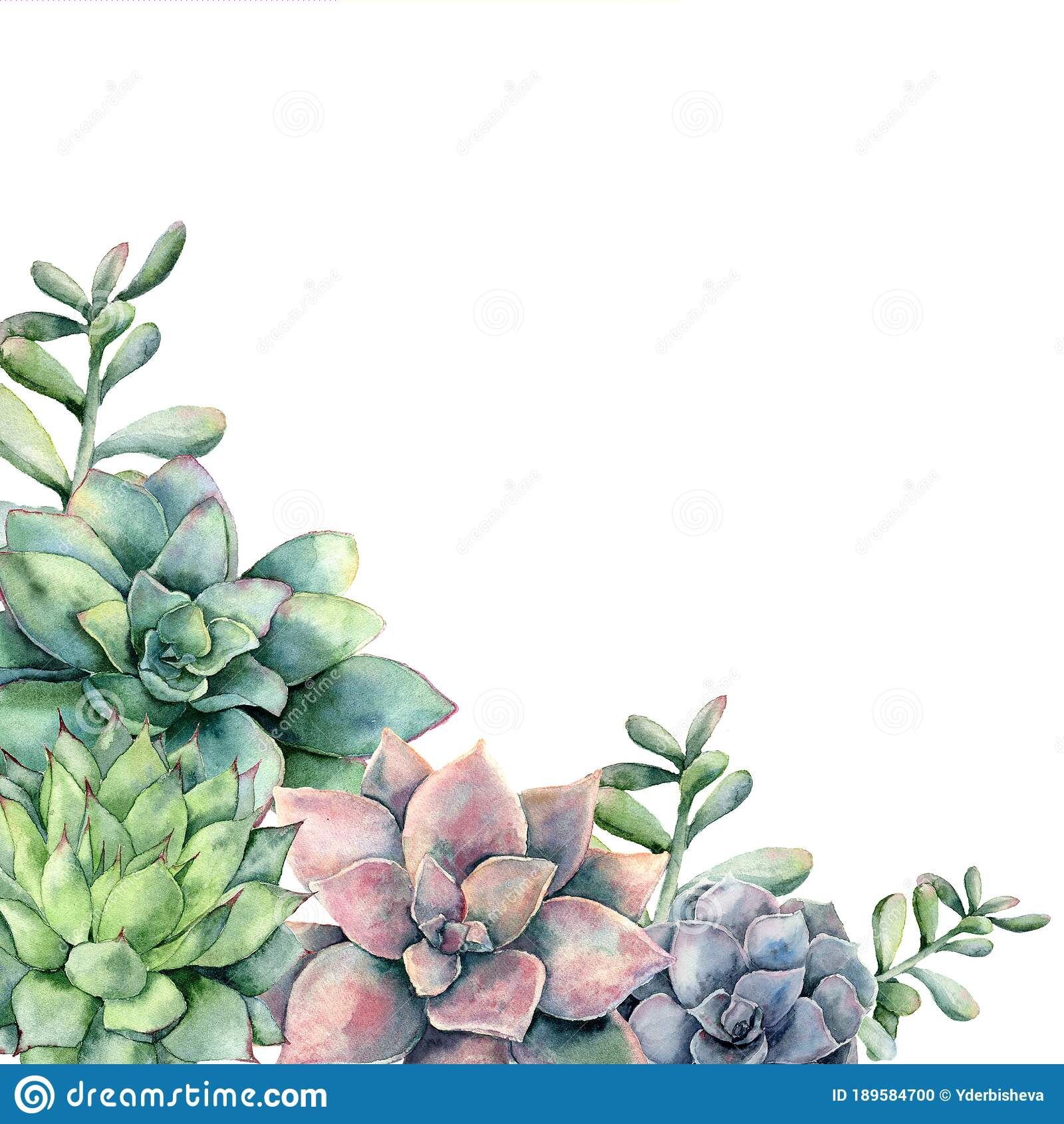 Watercolor Card With Bouquet Of Succulents Hand Painted Green And Violet Cacti Isolated On White Background Floral Stock Photo Image Of Elegant Cacti 189584700