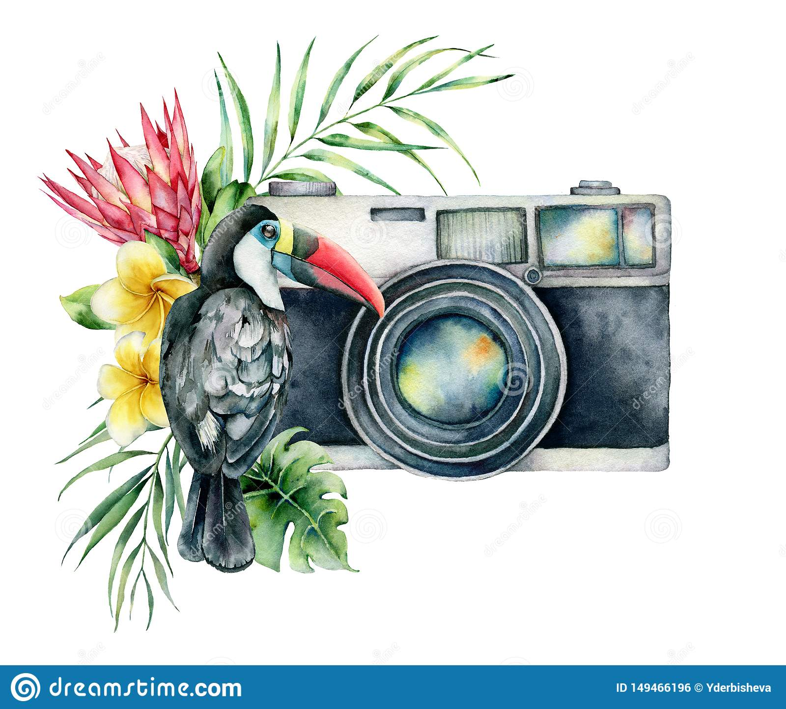 Watercolor card composition with camera, flower bouquet an toucan. Hand painted photographer logo with protea and leaves
