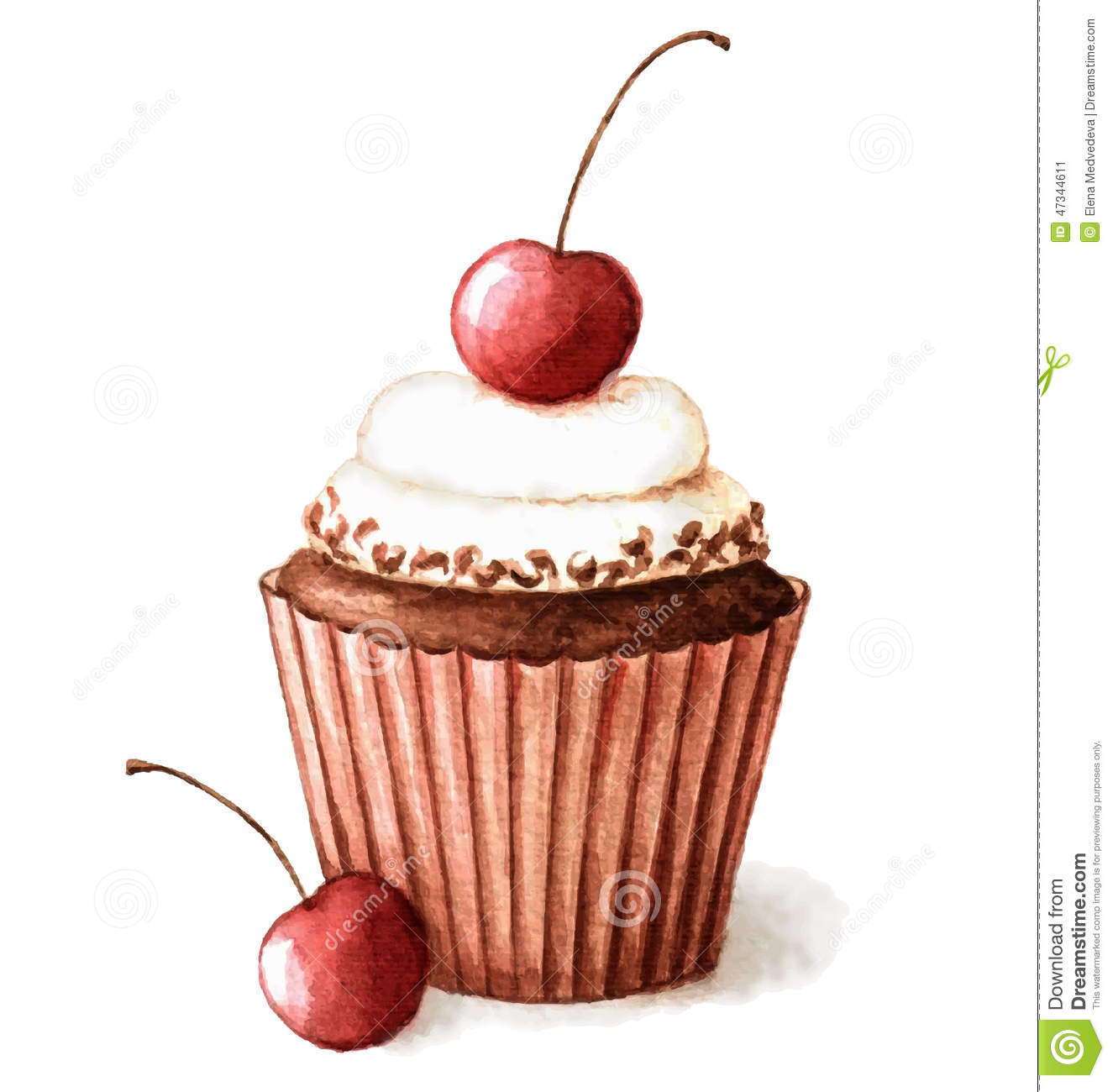 Watercolor Cherry Muffin Stock Vector Image 47344611