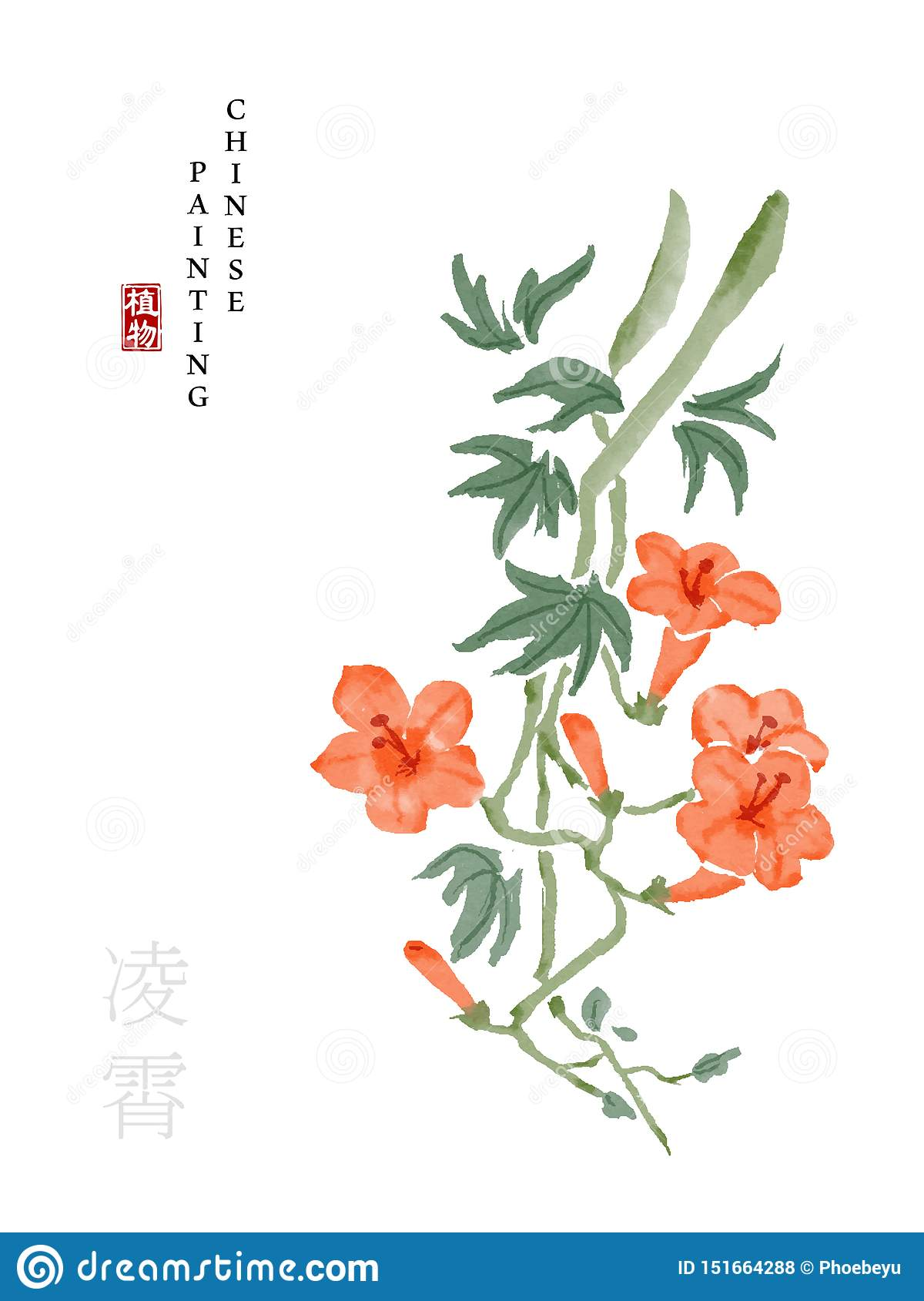 Watercolor Chinese ink paint art illustration nature plant from The Book of Songs Chinese trumpet creeper. Translation for the