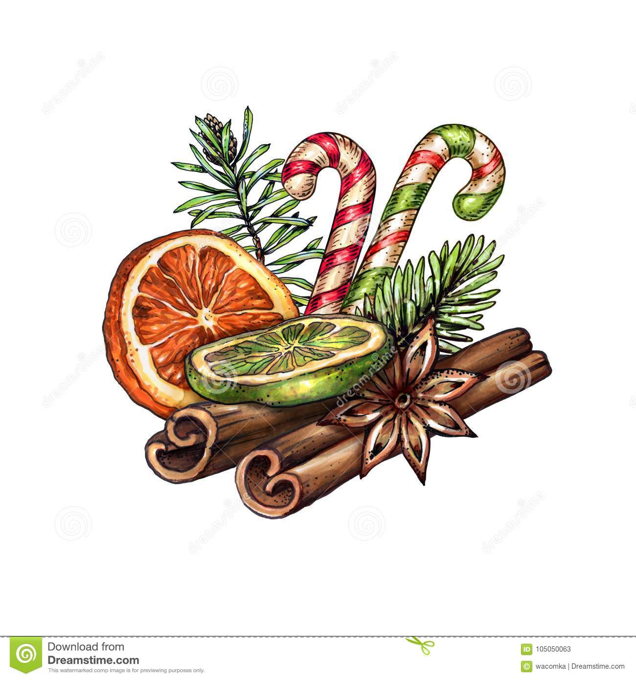 Watercolor Christmas Decoration Festive Food Illustration Dried