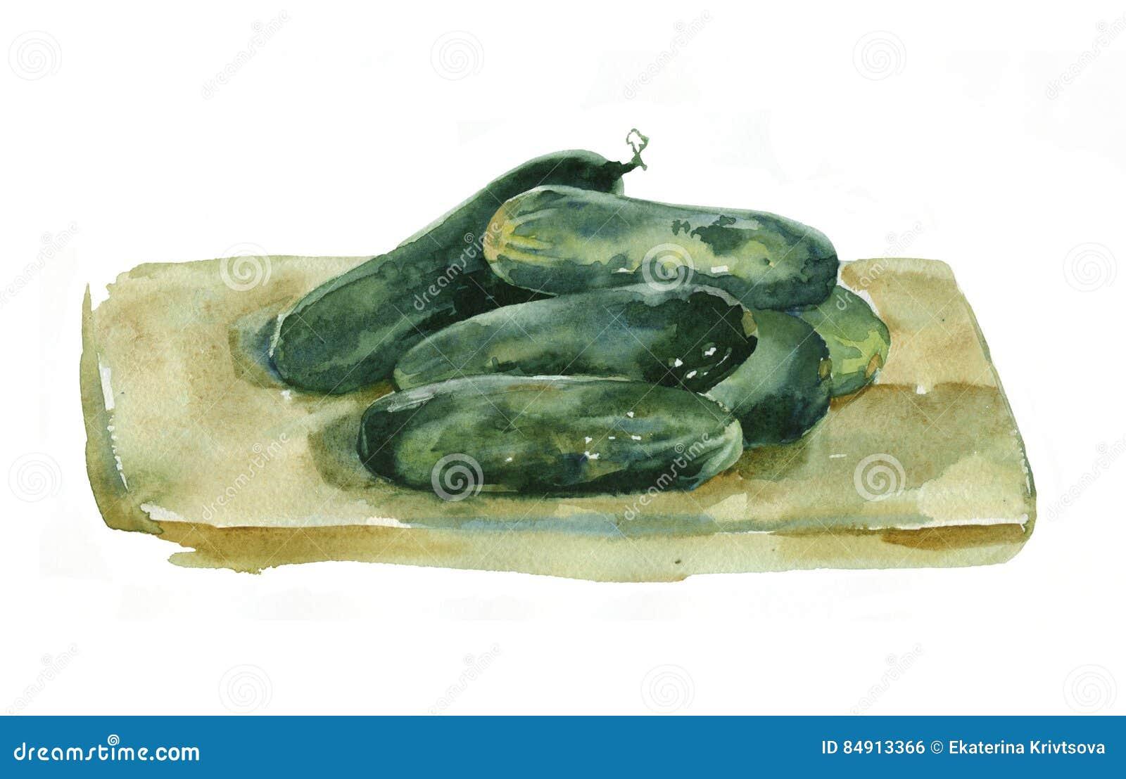 Watercolor cucumbers.