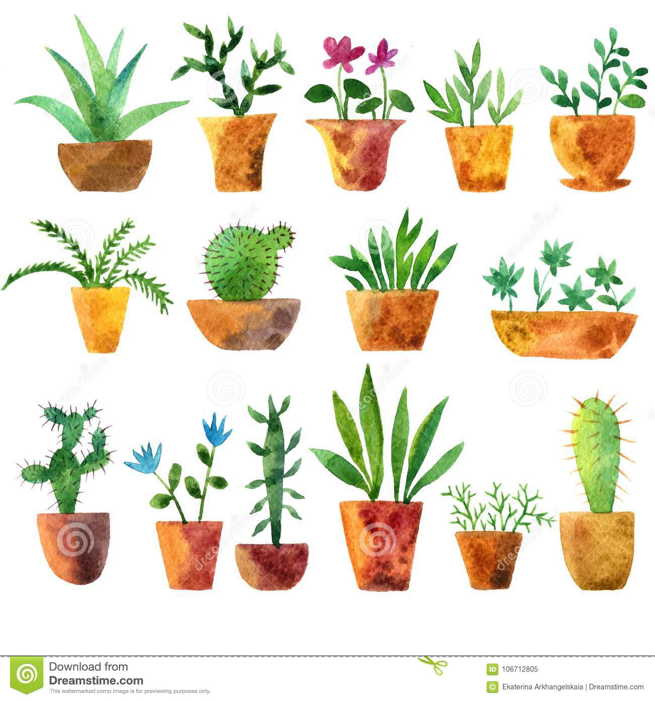 Watercolor Drawing Home Plants Stock Illustration Illustration Of Design Garden 106712805