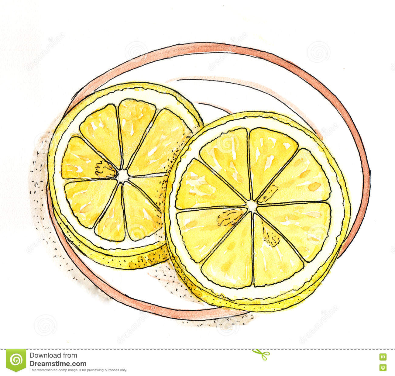 Watercolor Drawing - Lemon Slices On A Plate Stock ...