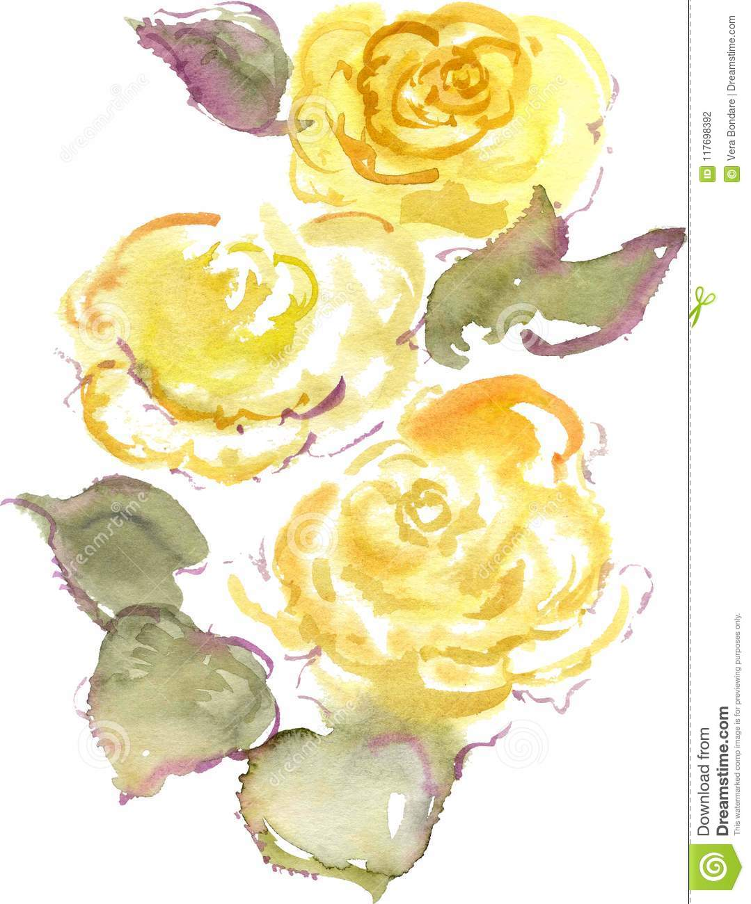 Watercolor Drawing Of Three Yellow Rose Buds Stock Photo