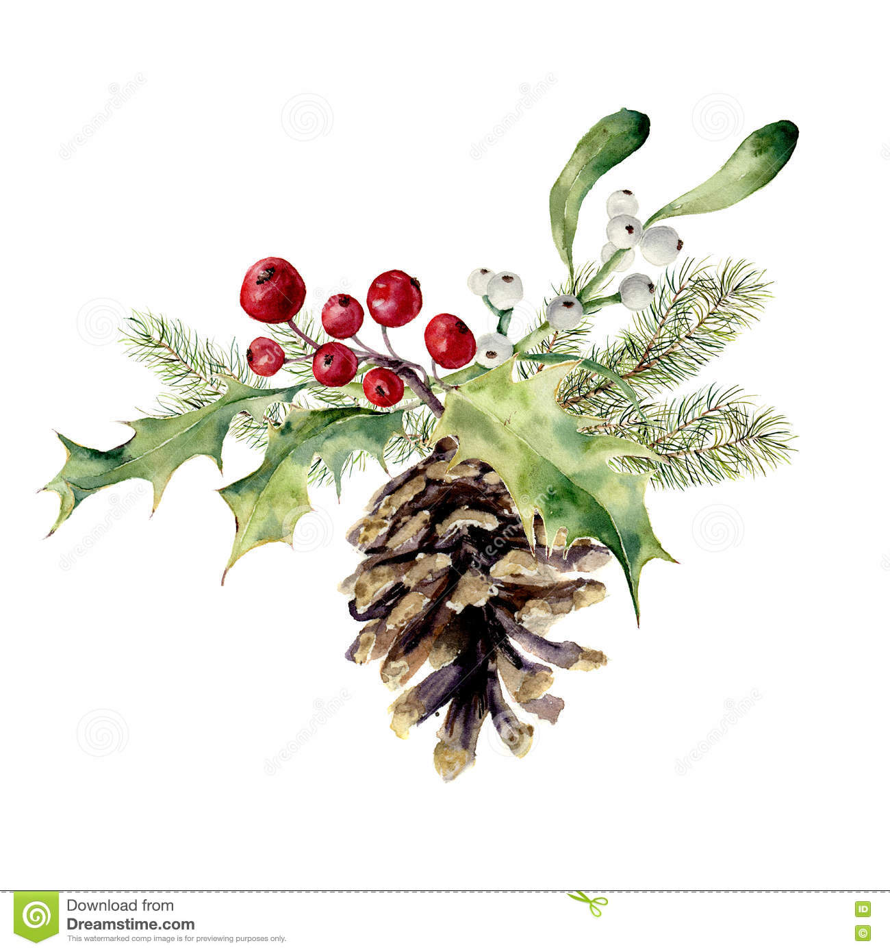 watercolor fir cone with christmas decor pine cone with. Black Bedroom Furniture Sets. Home Design Ideas