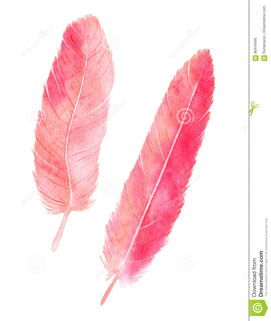 Watercolor flamingo feathers stock illustration for Flamingo feather paint