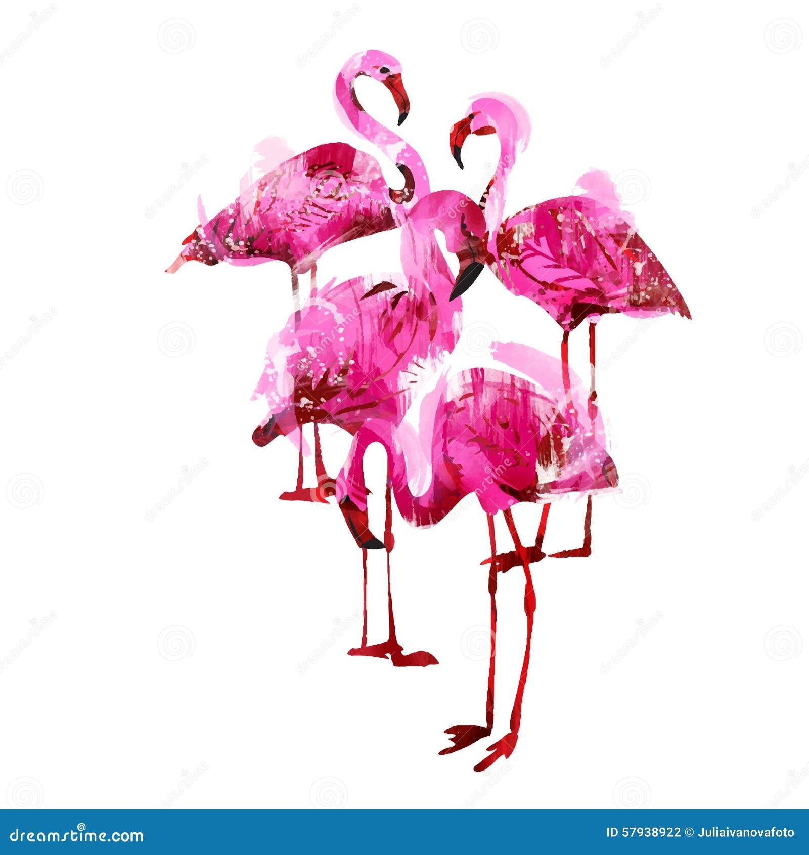 Watercolor Flamingos Stock Vector Image 57938922