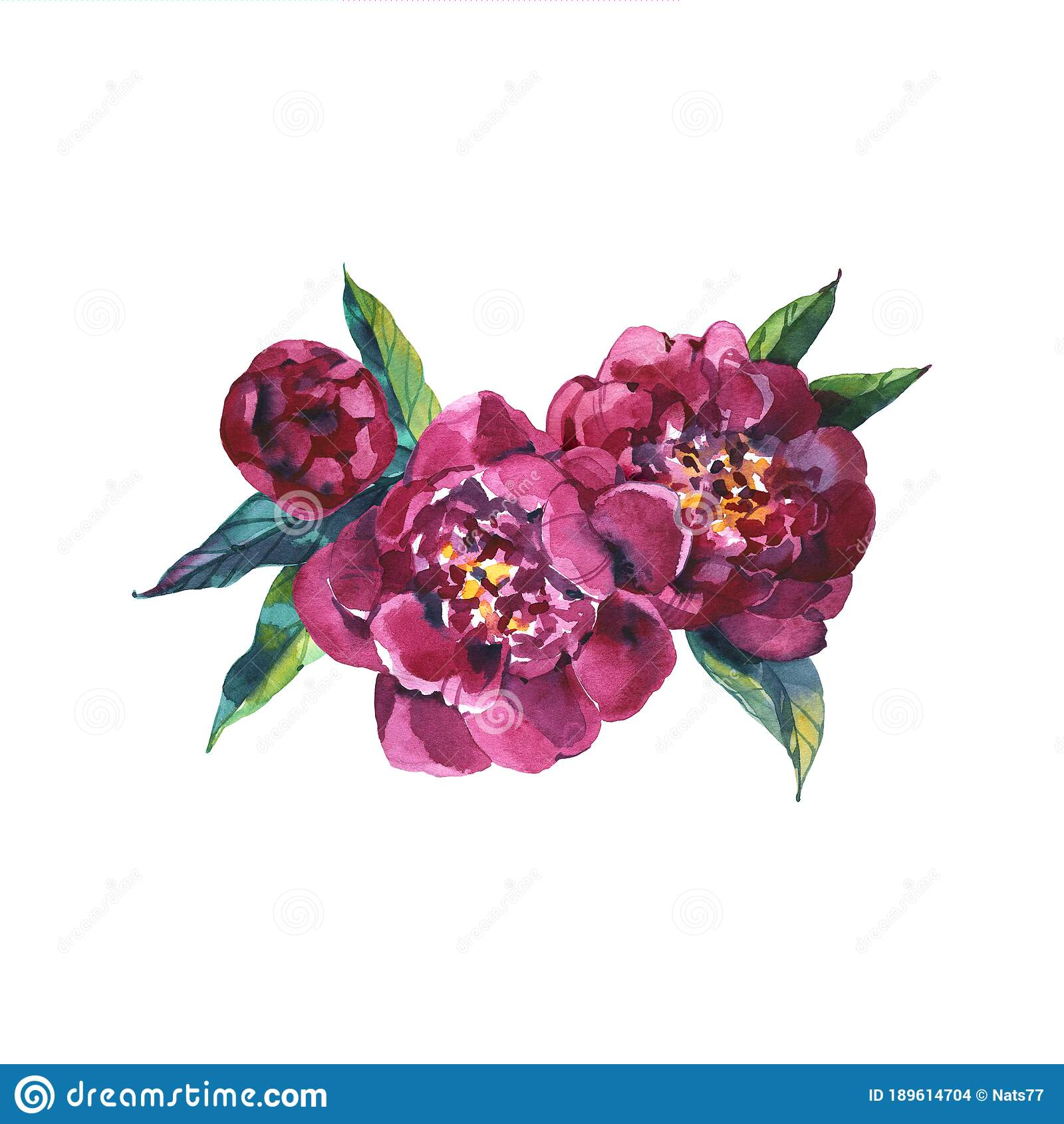 Watercolor Floral Bouquet Purple Burgundy Roses Peonies Fall Leaves And Flowers Isolated On White Background Stock Illustration Illustration Of Invitation Painted 189614704