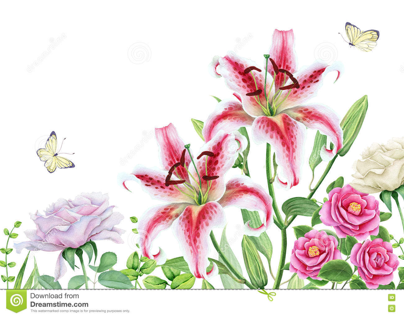Watercolor Floral Image With Lily Camellia And Rose Flowers Stock