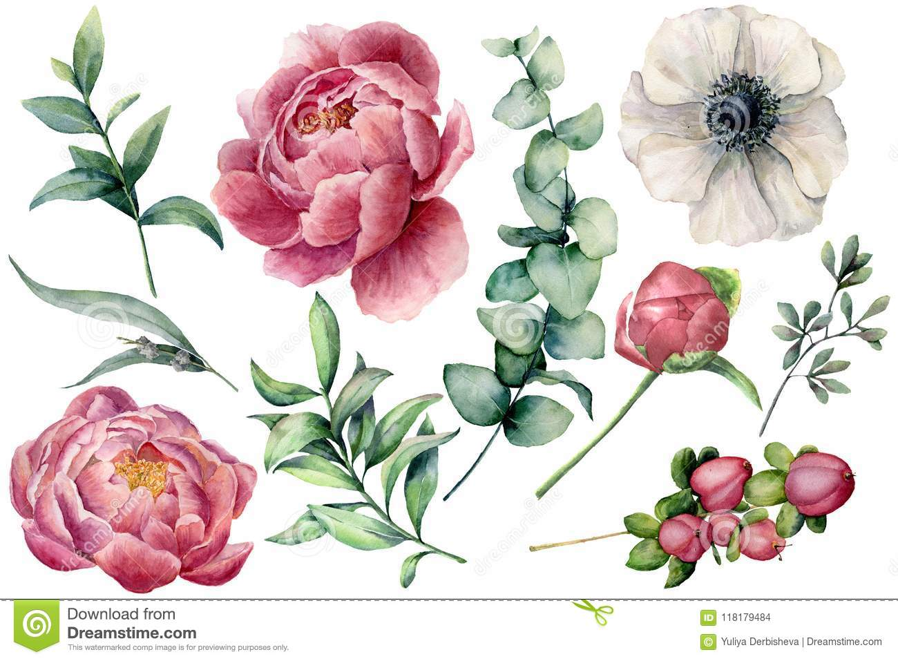 Watercolor floral set with flowers and eucalyptus branch. Hand painted peony, anemone, berries and leaves isolated on
