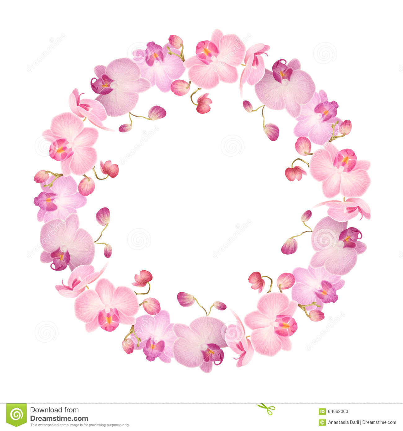Watercolor Floral Wreath Of Orchids Stock Illustration Image 64662000