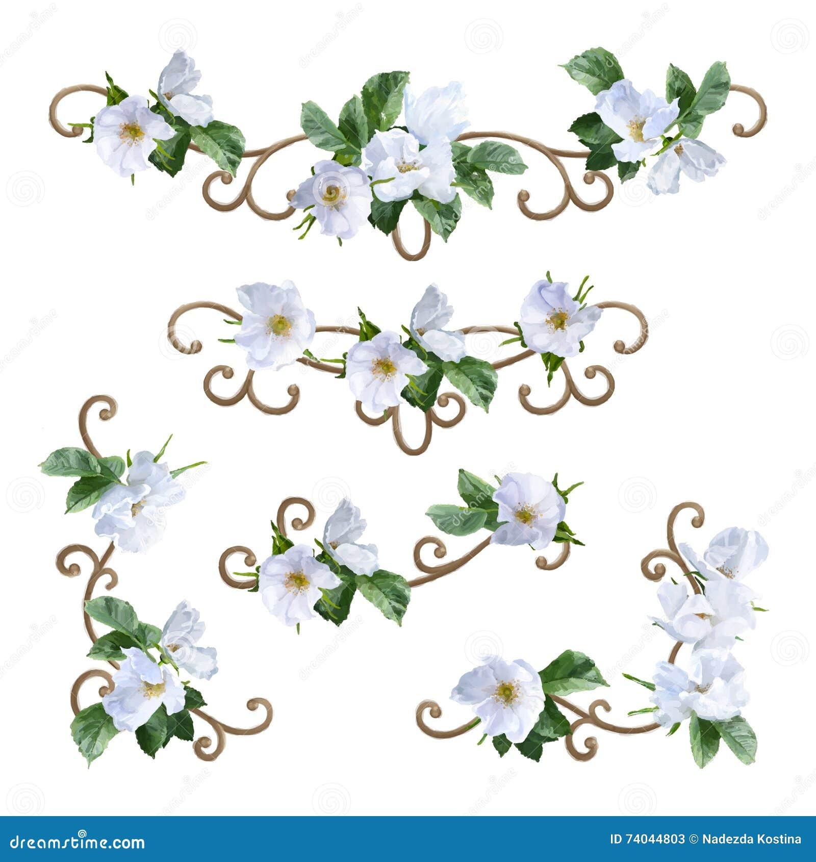 Watercolor Flower Border Stock Illustration Image 74044803