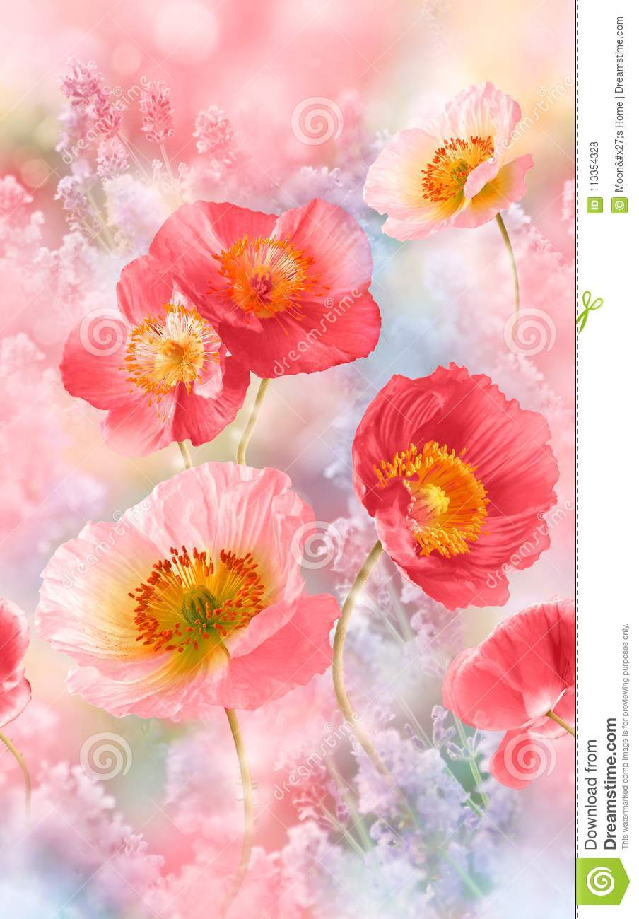 Watercolor Flower Illustration Pattern In Simple Background ...