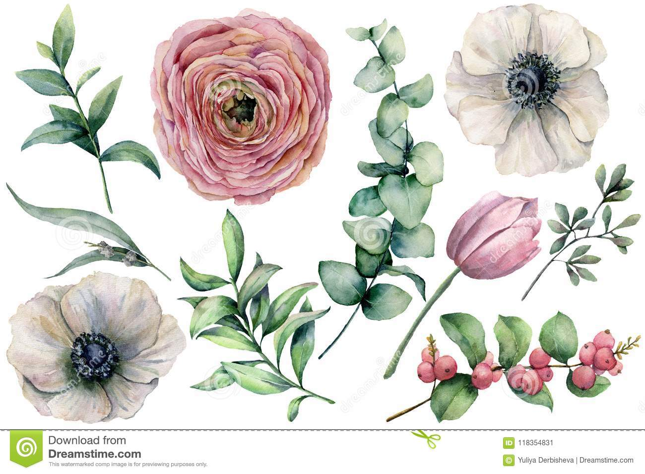 Watercolor flower set with eucalyptus leaves. Hand painted anemone, ranunculus, tulip, berries and branch isolated on