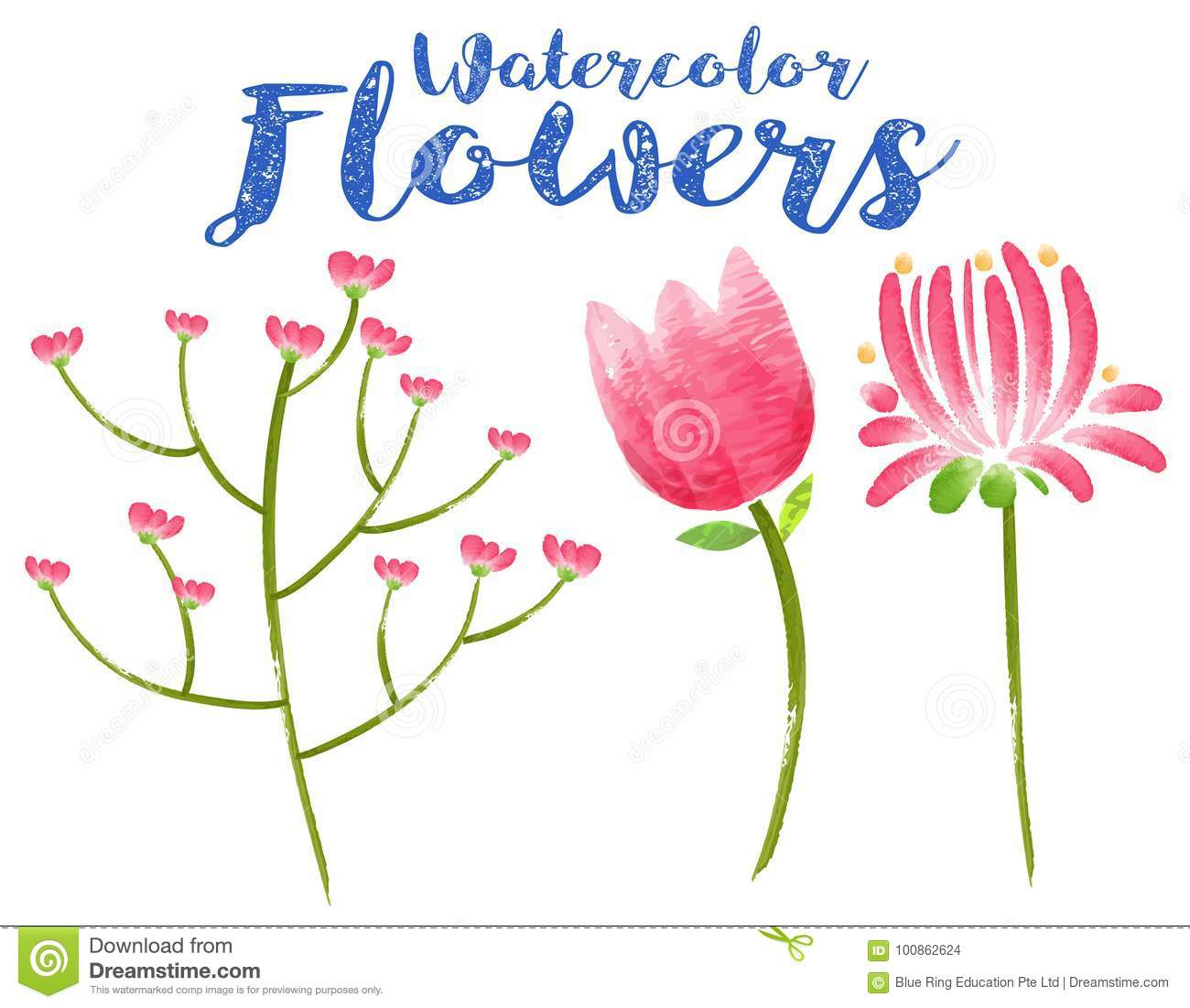 Watercolor Flowers With Three Different Types Of Pink Flowers Stock