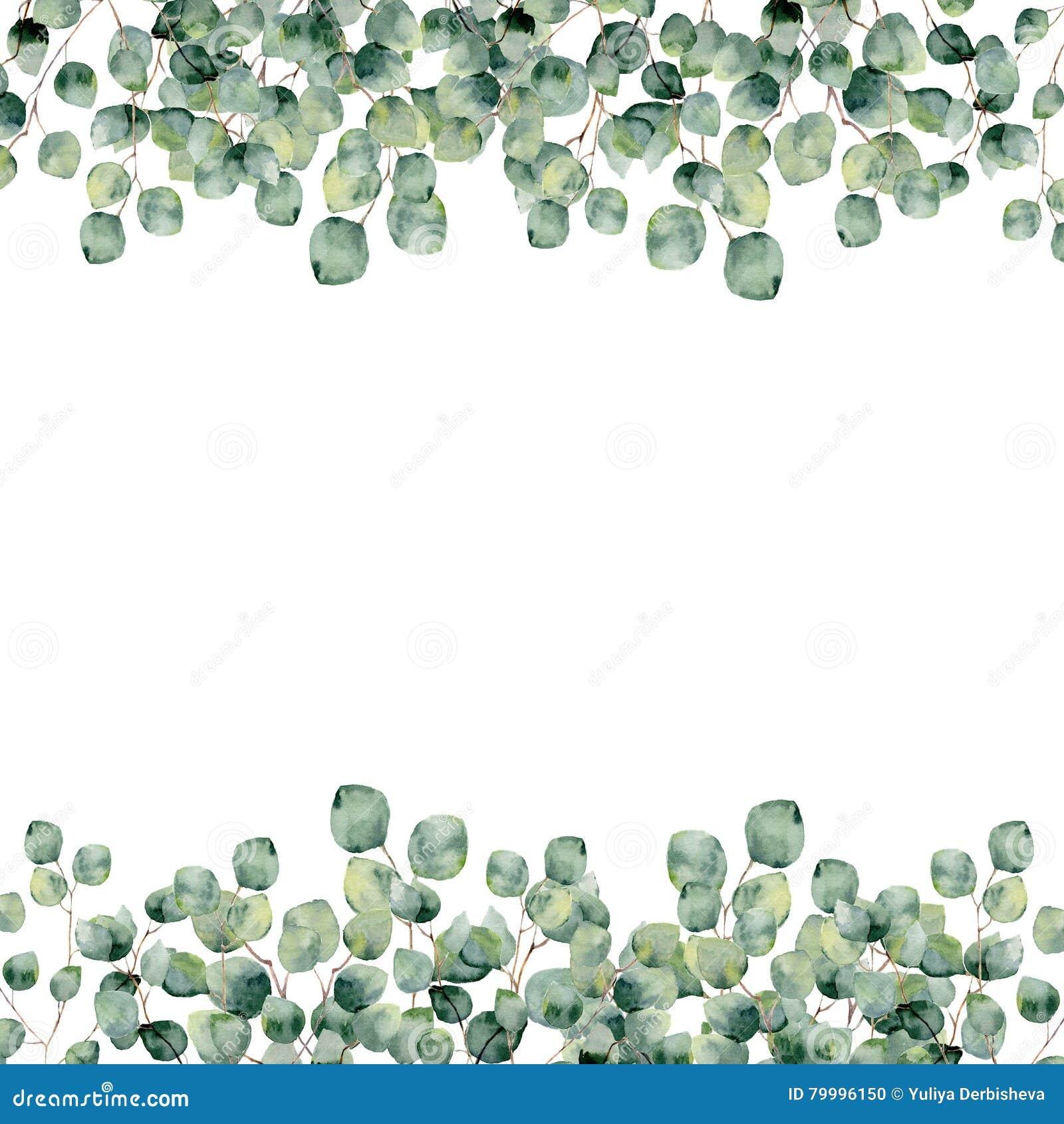 Watercolor frame with eucalyptus silver dollar. Botanical design