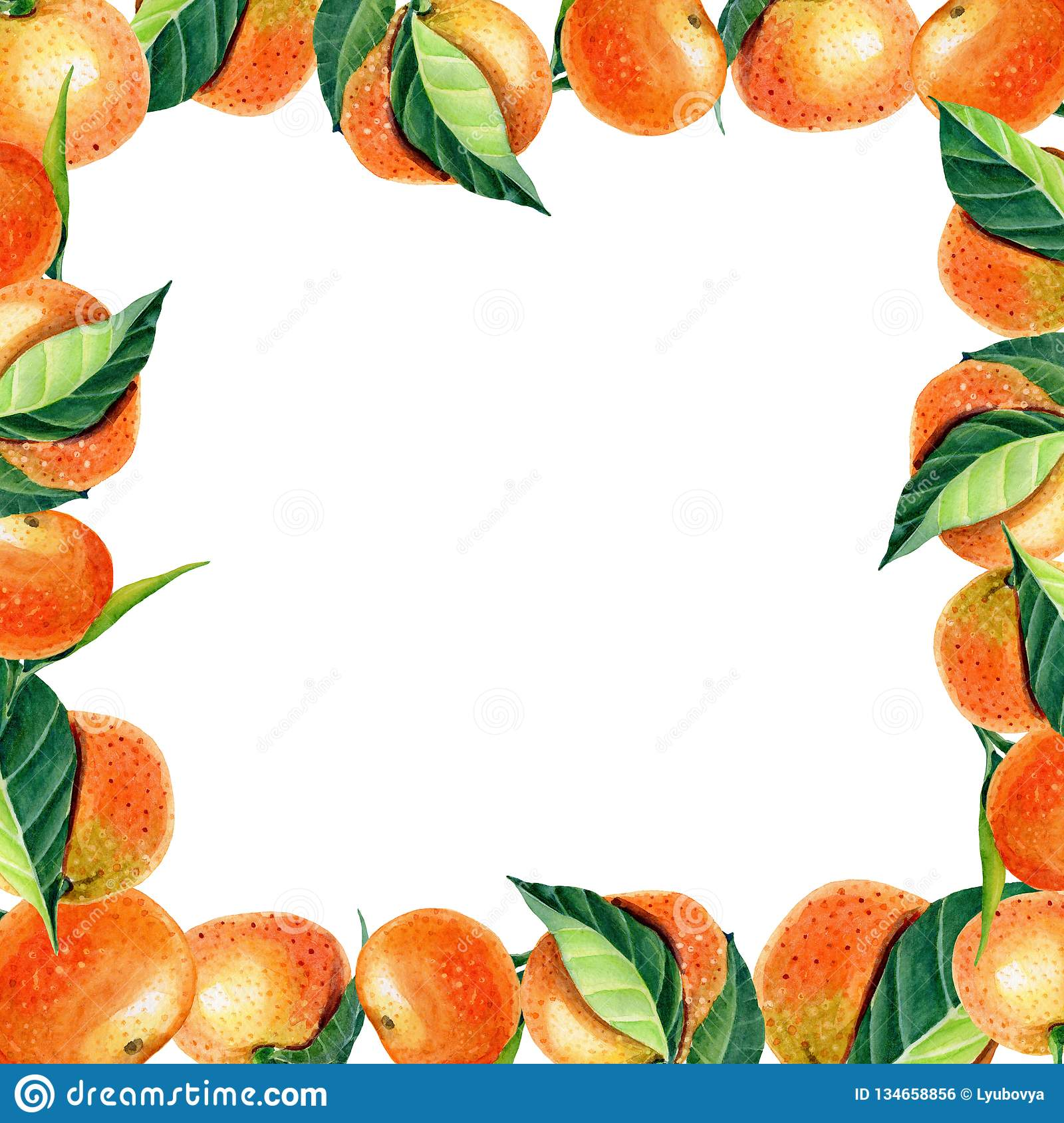 Watercolor frame greeting card with orange tangerine