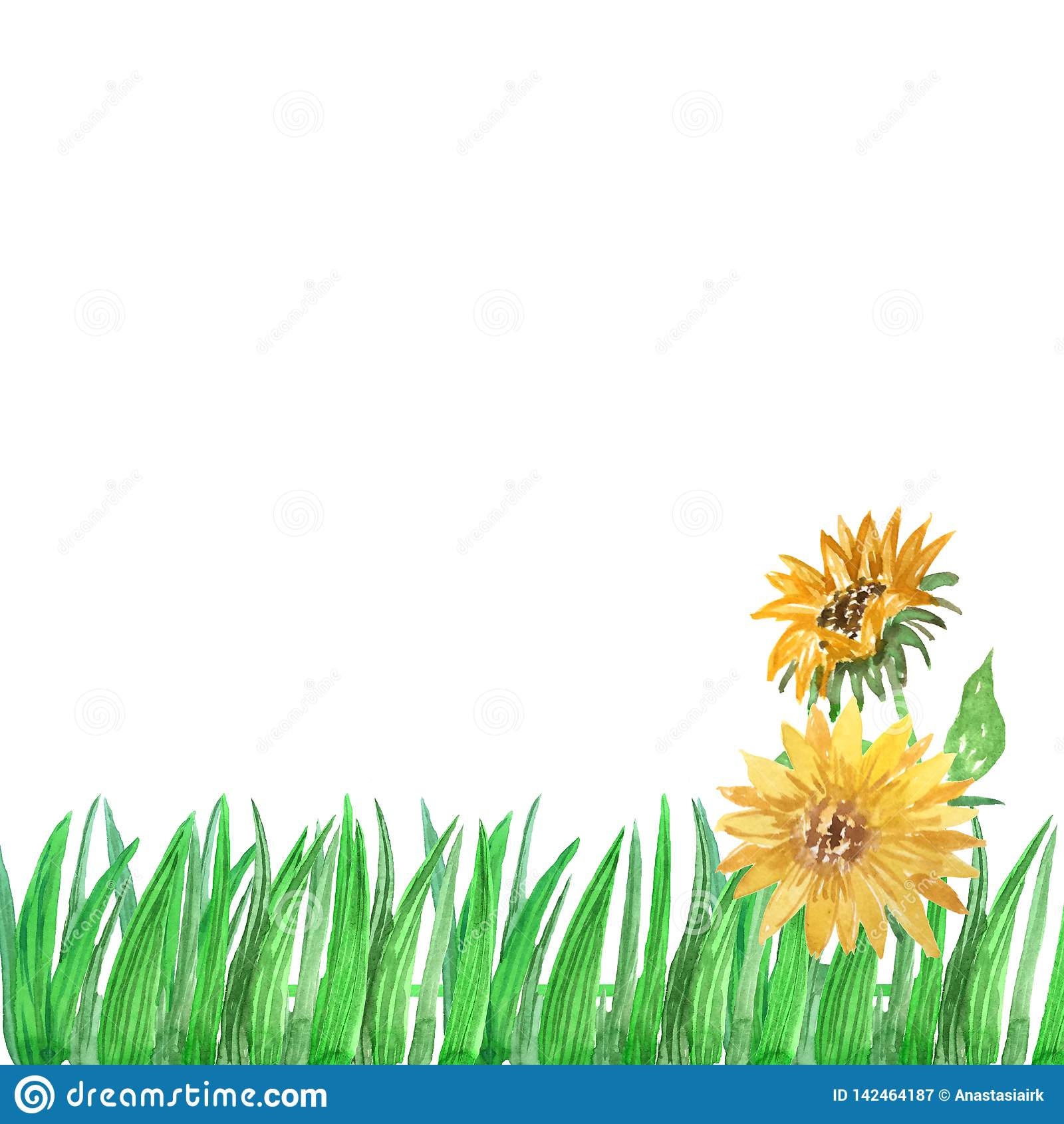 Watercolor grass frame with sunflowers on a white background