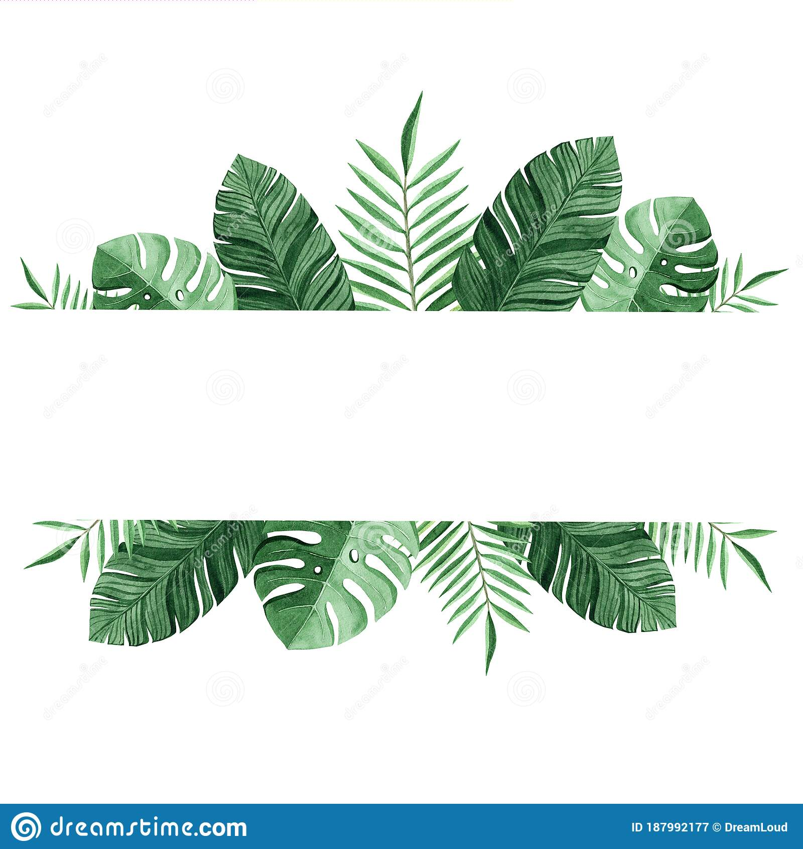 Watercolor Green Tropical Border Isolated On White Background Palm Leaves Banner Stock Illustration Illustration Of Branch Card 187992177 Palm tree tropical leaves border and frame background. dreamstime com