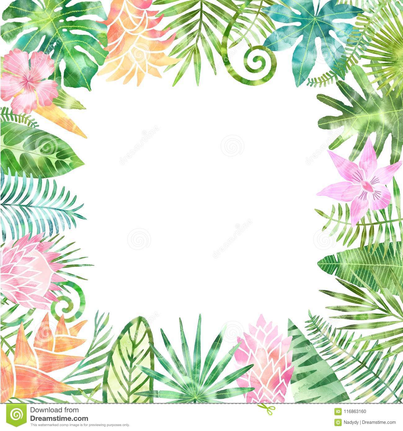 Watercolor Green Tropical Plants Frame, Place For Your Text. White ...