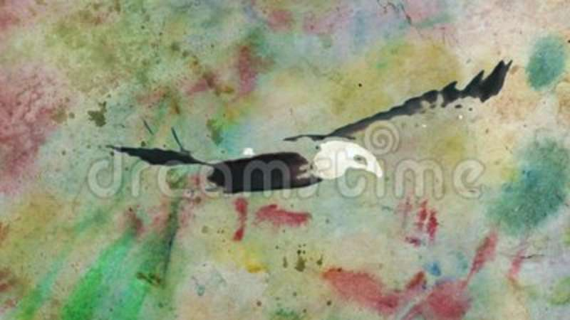 watercolor grunge drawn bald eagle sky fly stop motion cartoon animation seamless loop new quality nature animals stock footage video of motion