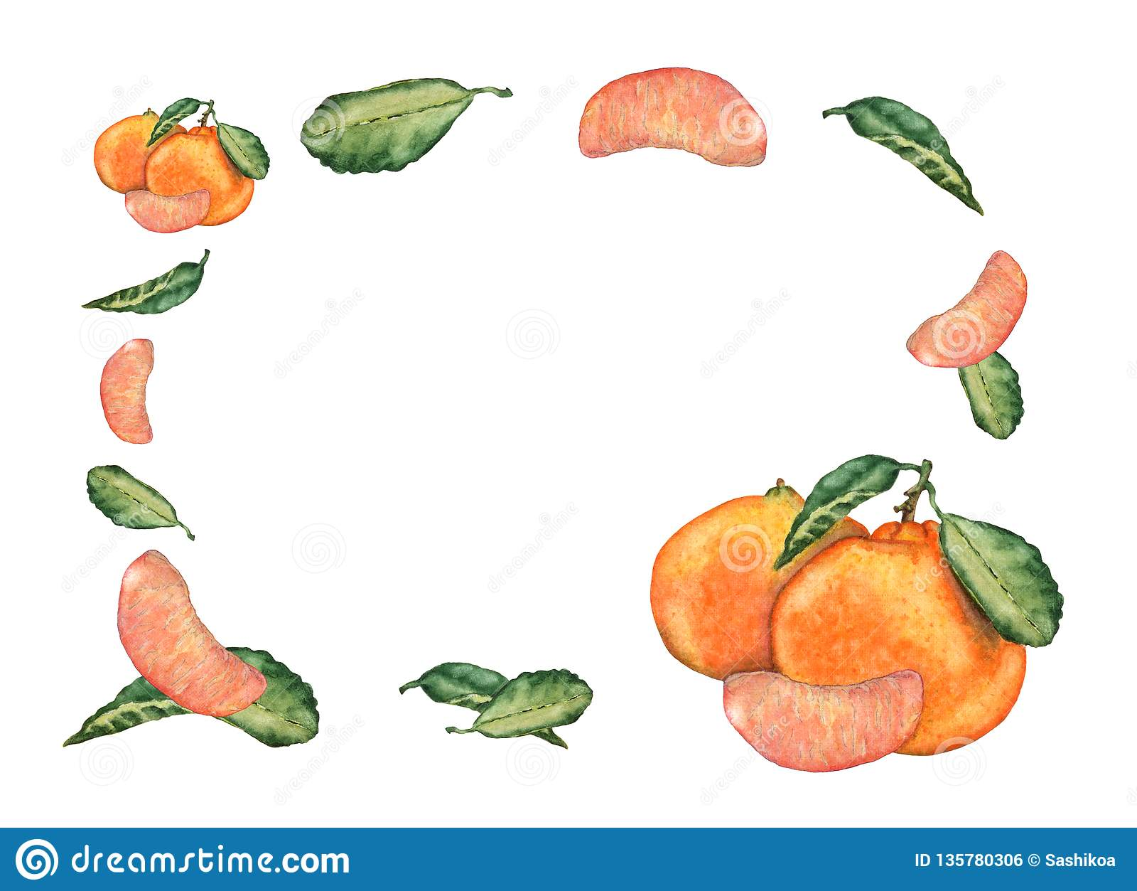 Watercolor greeting or invitation card of mandarin fruits on white background