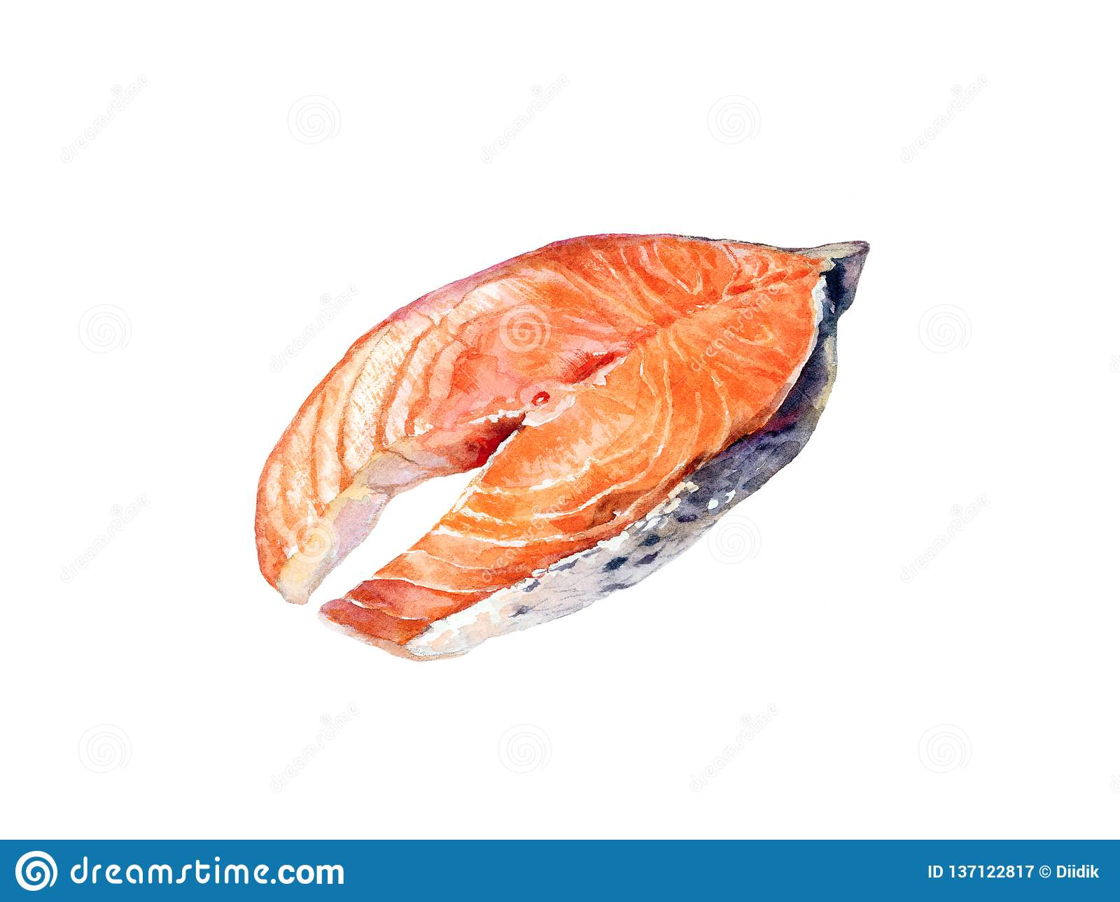 Watercolor hand drawn piece of salmon fish realistic illustration isolated on white royalty free stock photography