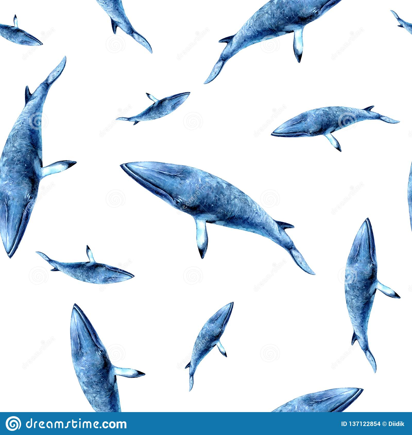Watercolor hand drawn whale isolated seamless pattern stock images